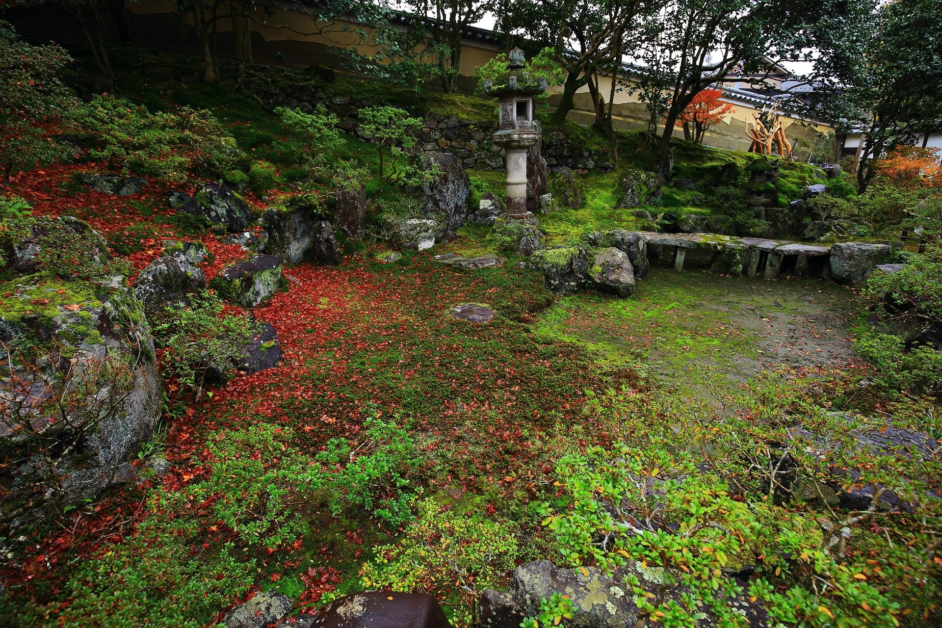 深い緑や趣きある岩を染める秋色の散り紅葉