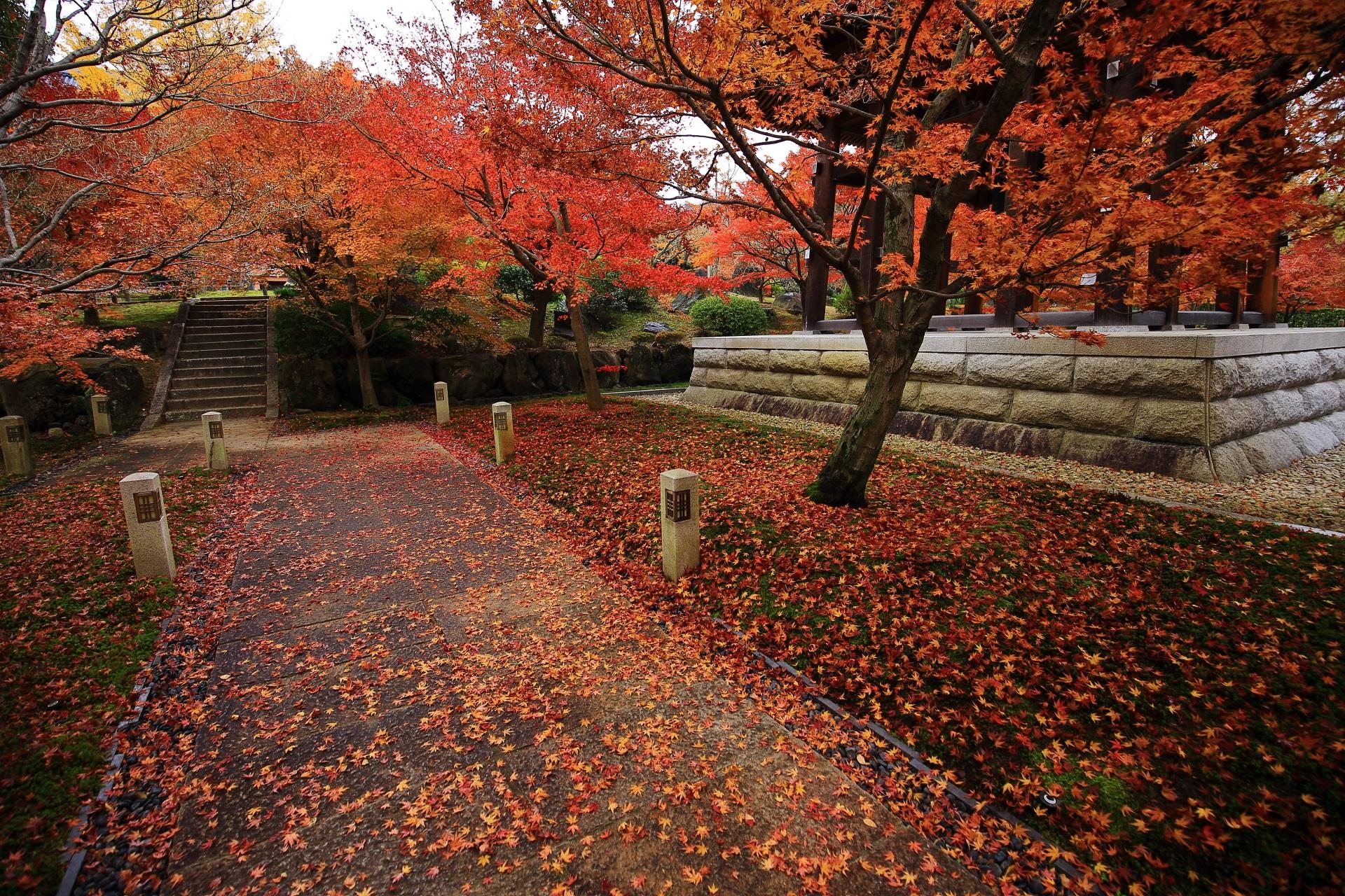 紅葉と散りもみじが作る見事な秋色の空間