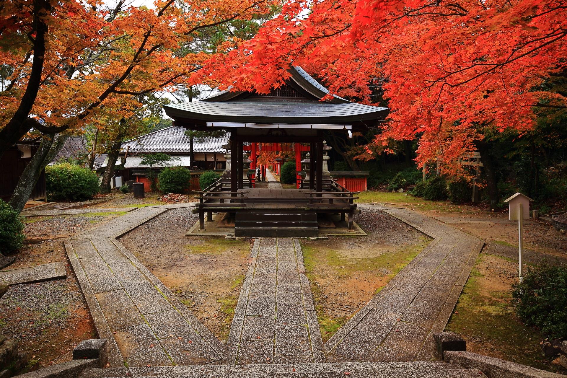 極上の紅葉の穴場の竹中稲荷神社