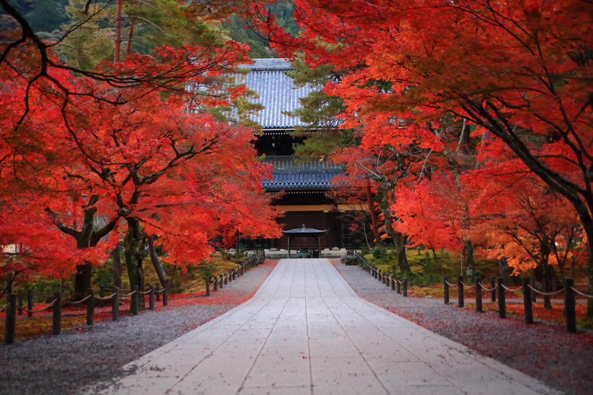 南禅寺の絶品の紅葉と秋色の情景
