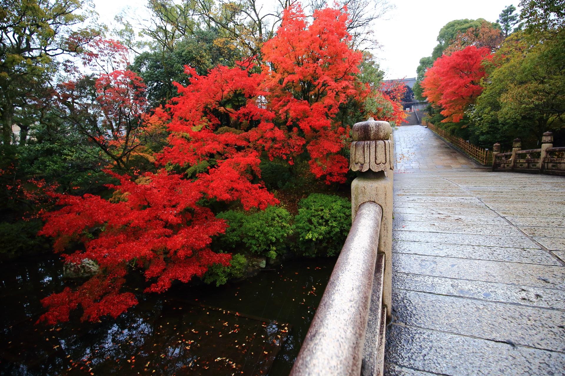 大谷本廟の皓月池と円通橋を彩る燃え上がるような紅葉