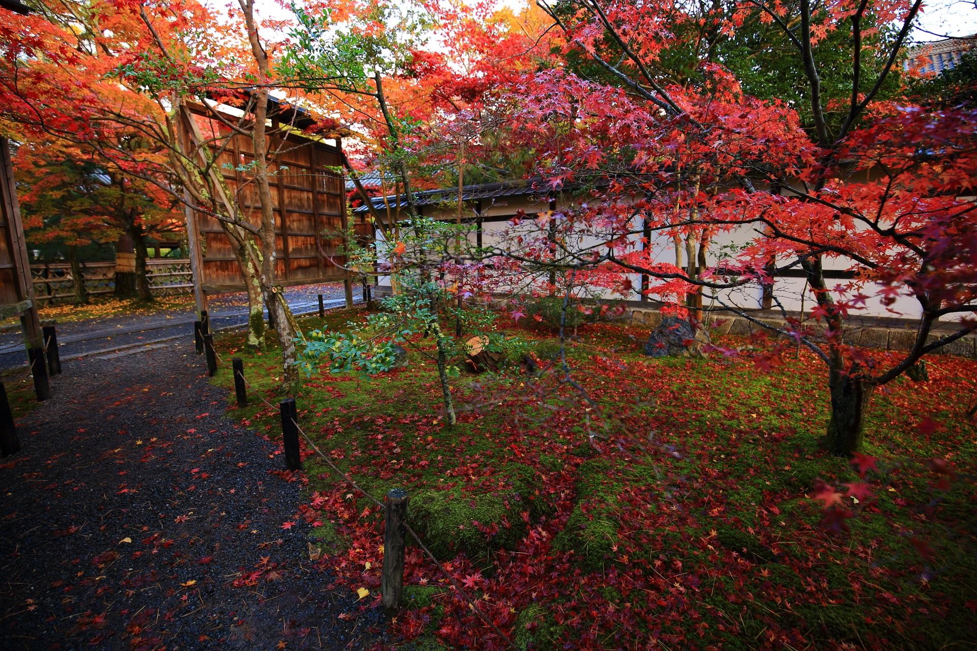 方丈庭園や書院前あたりの見事な秋色の空間