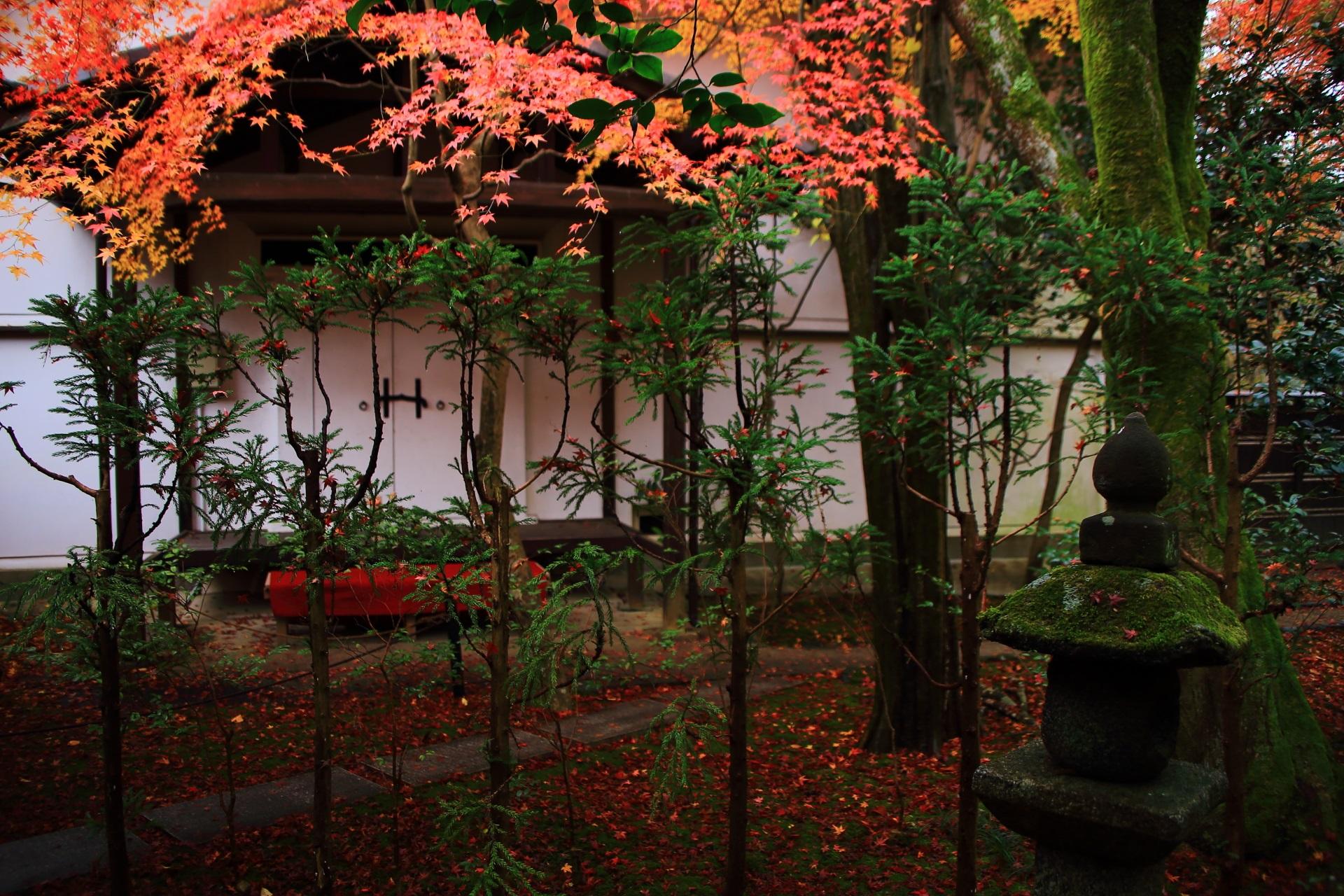 落ち着いた空間を明るく染める紅葉