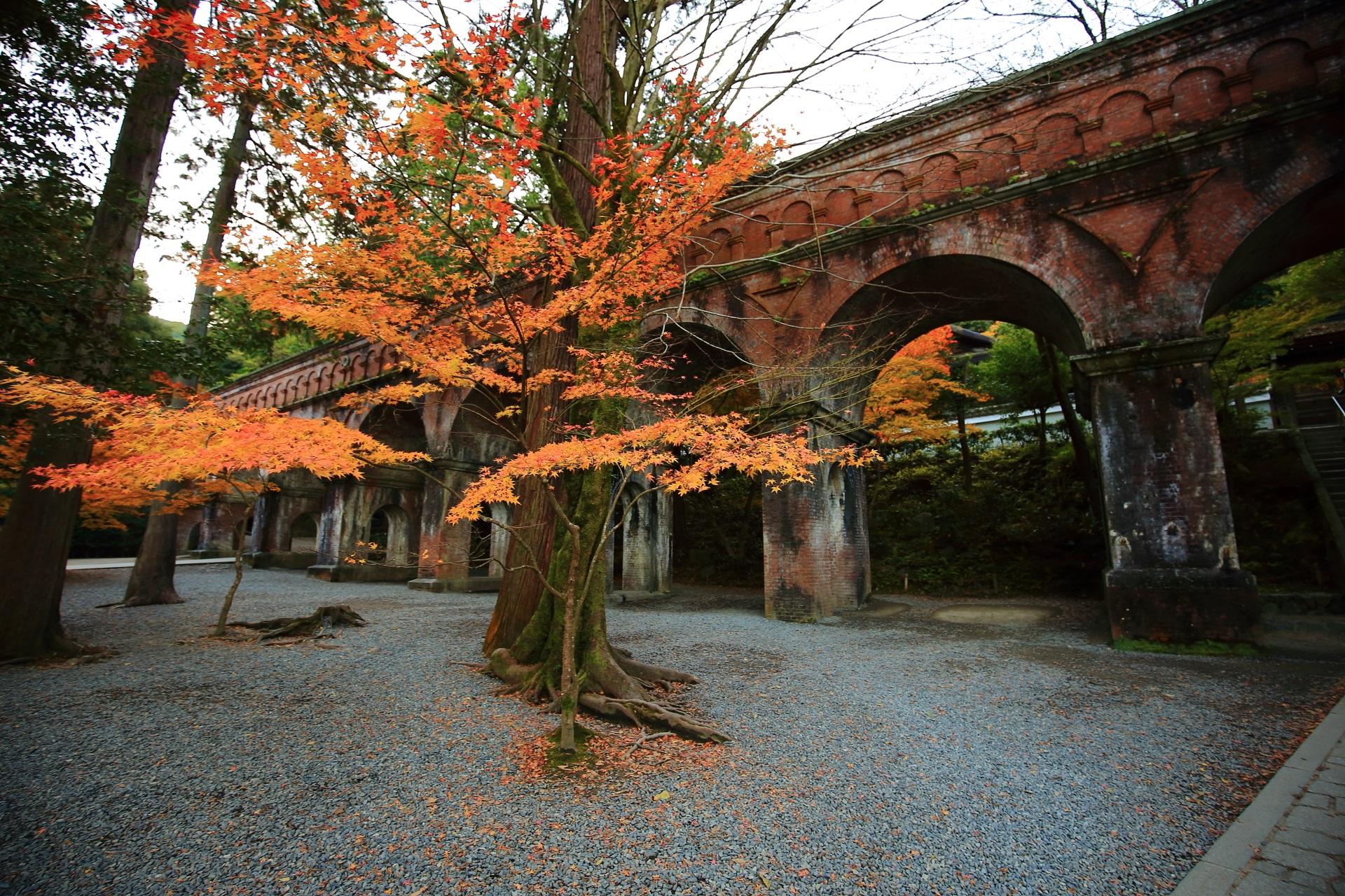 南禅寺の水路閣と紅葉