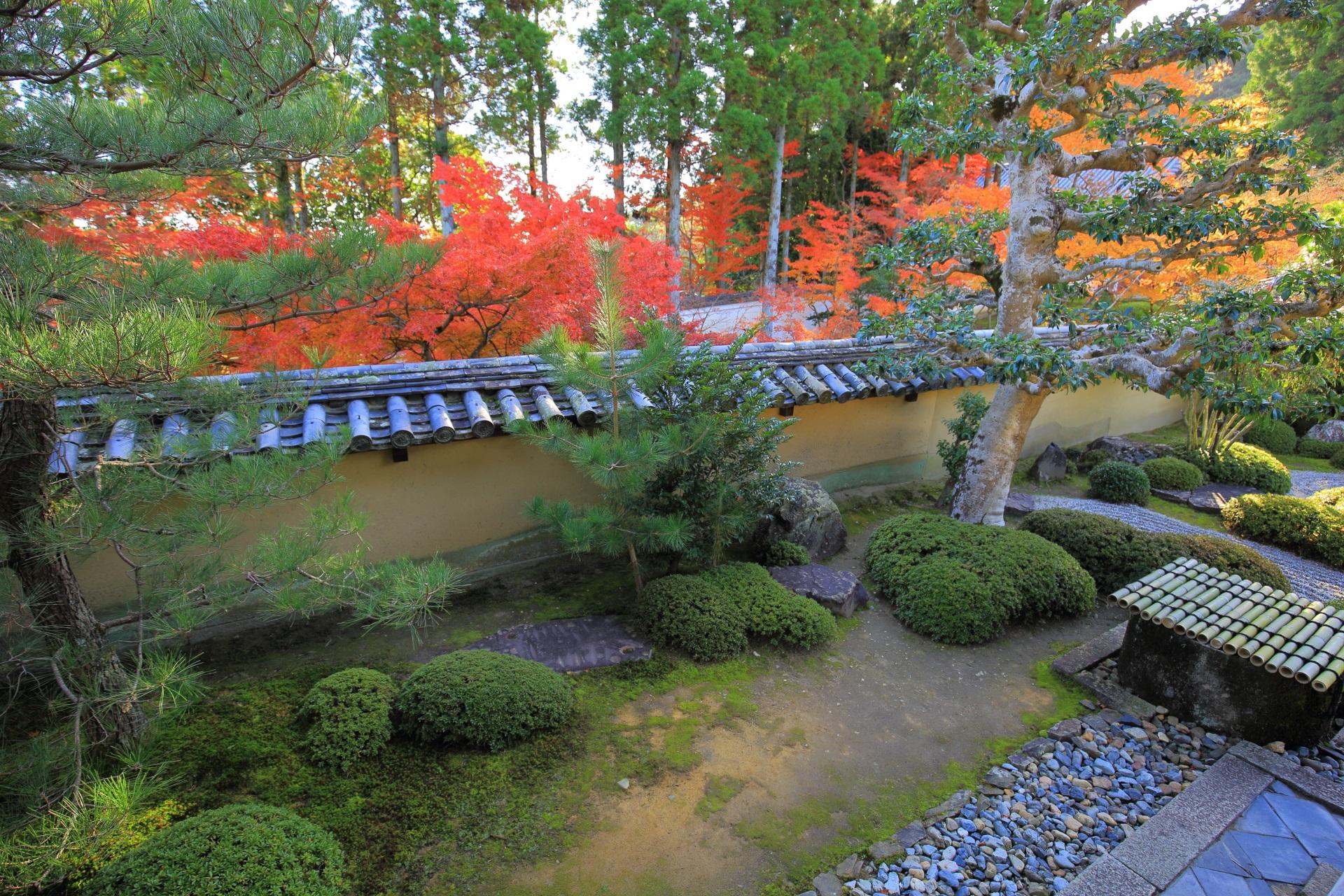 方丈庭園東庭の紅葉