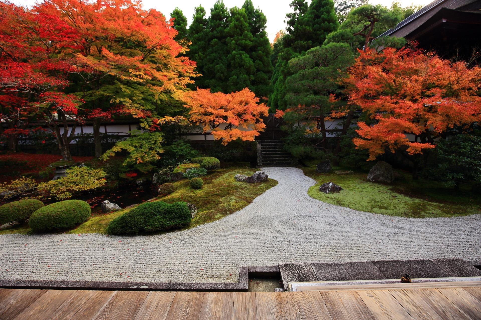 上品で優雅な庭園の極上の紅葉