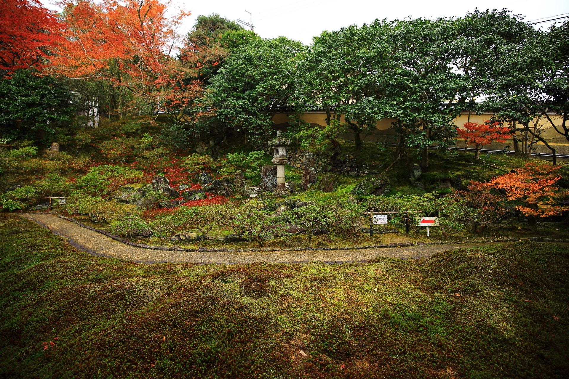 霊鑑寺の苔と緑につつまれた枯山水庭園と華やぐ紅葉