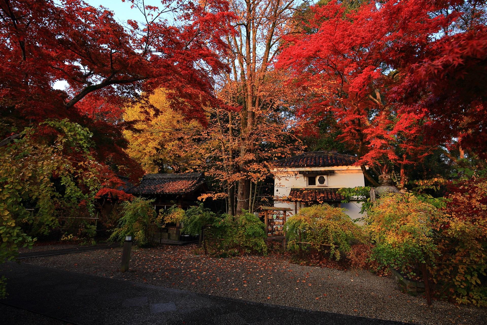 梨木神社の「染井の水」や土蔵を彩る紅葉や銀杏