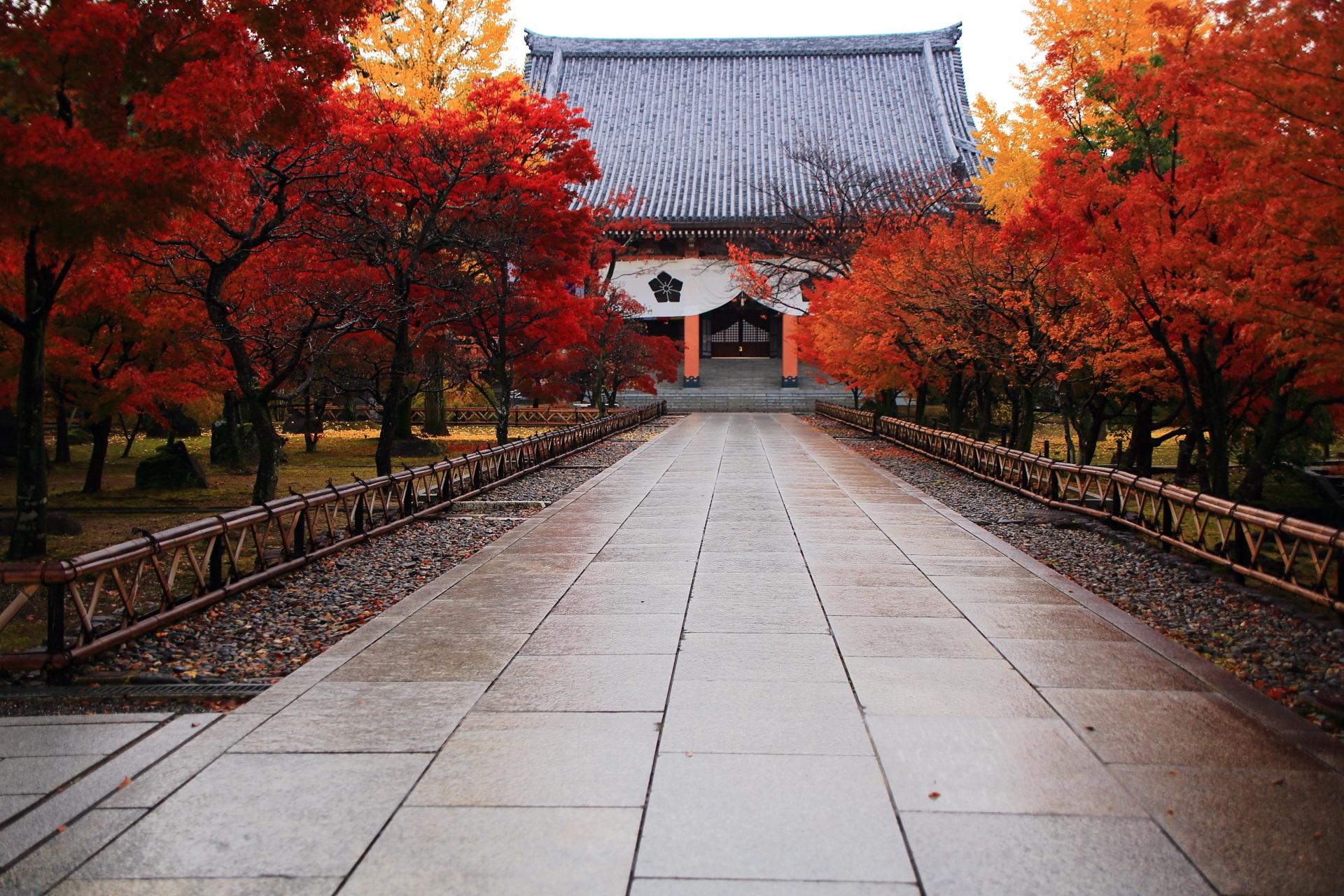紅葉に染まった雨上がりの鮮やかな参道とその奥に凛として佇む金堂
