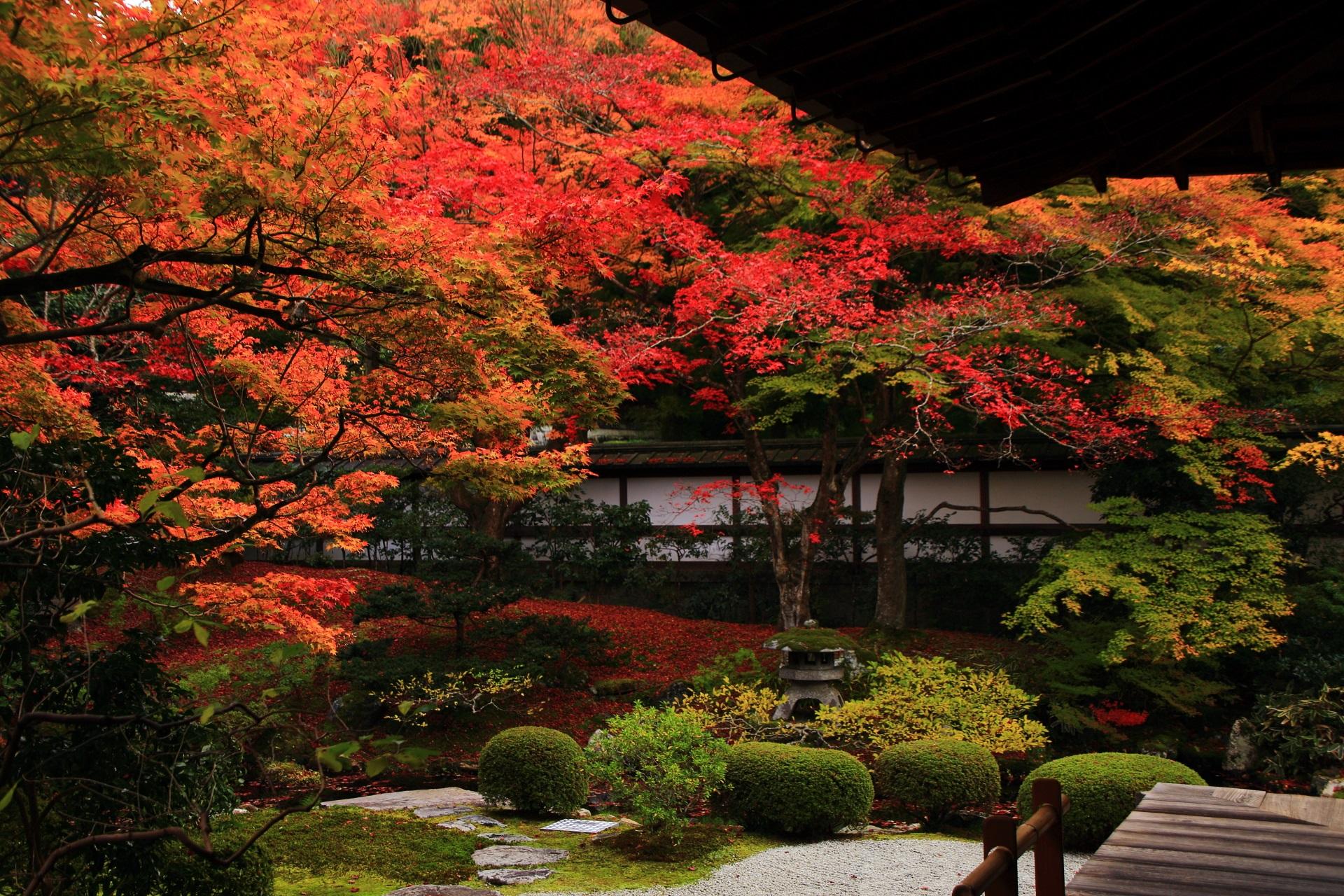 秋の紅葉シーズンは結構混むことがある泉涌寺庭園