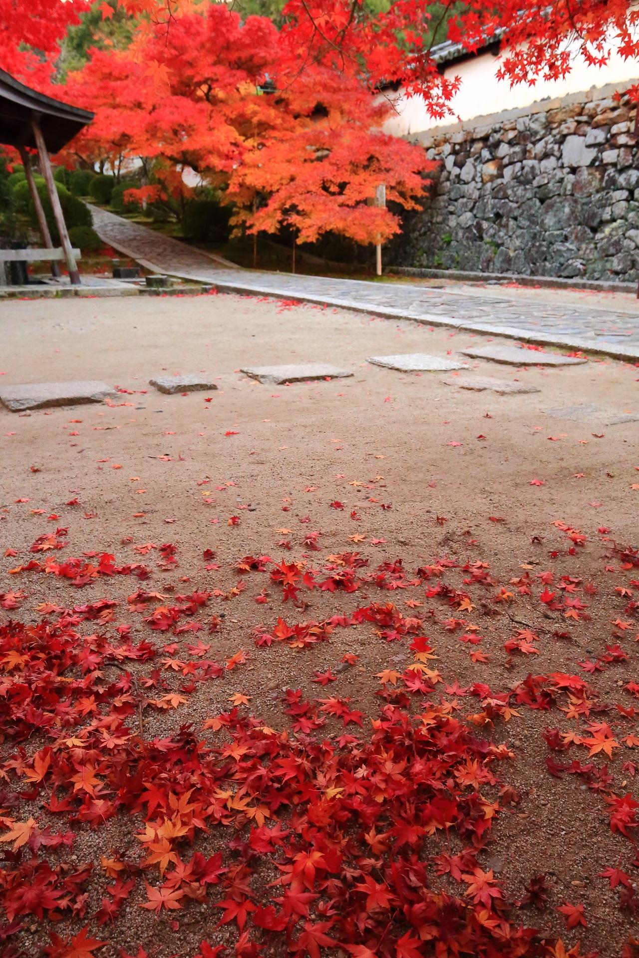 参道の紅葉と華やかな散り紅葉