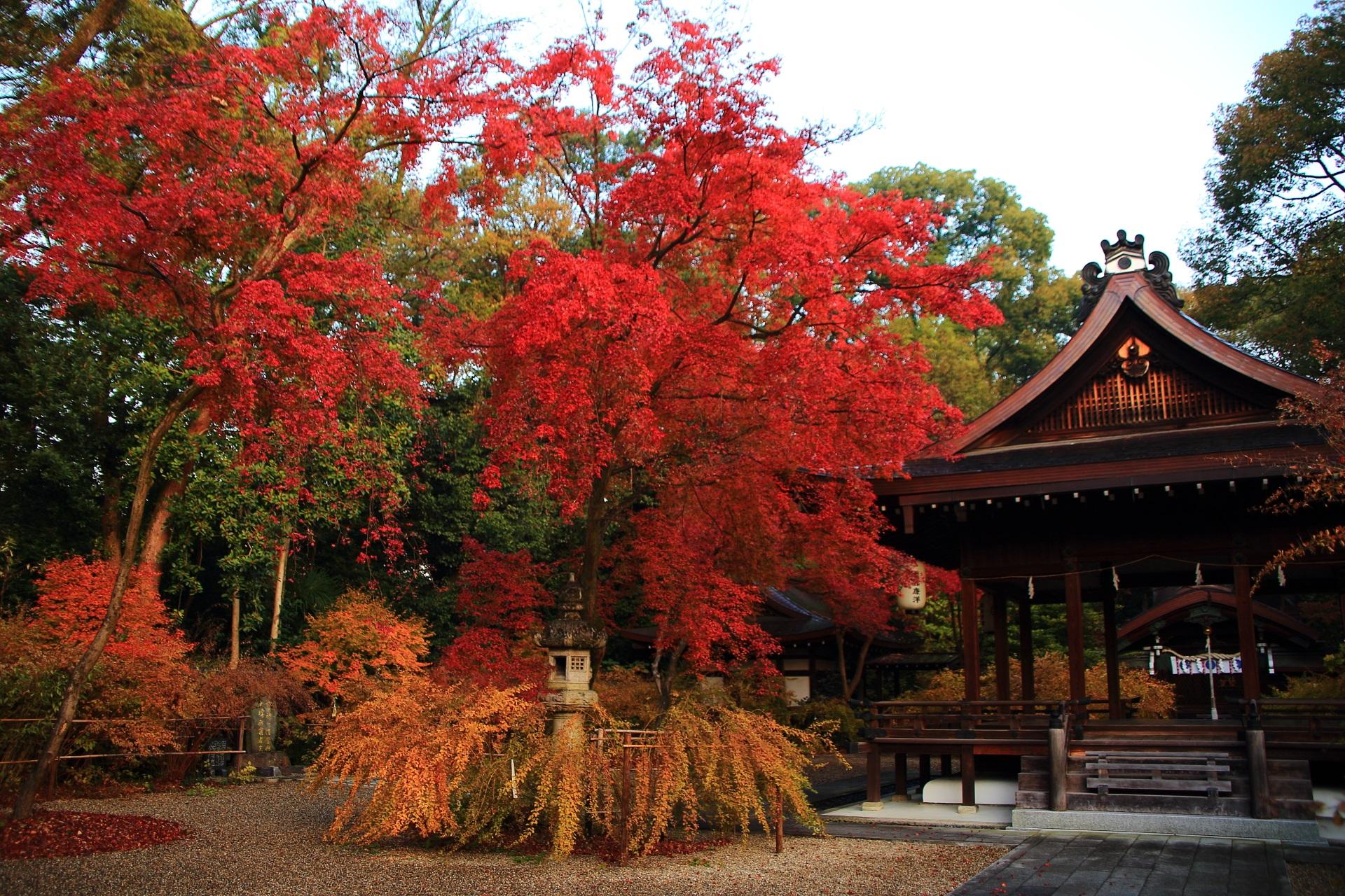 梨木神社の絶品の紅葉と情景