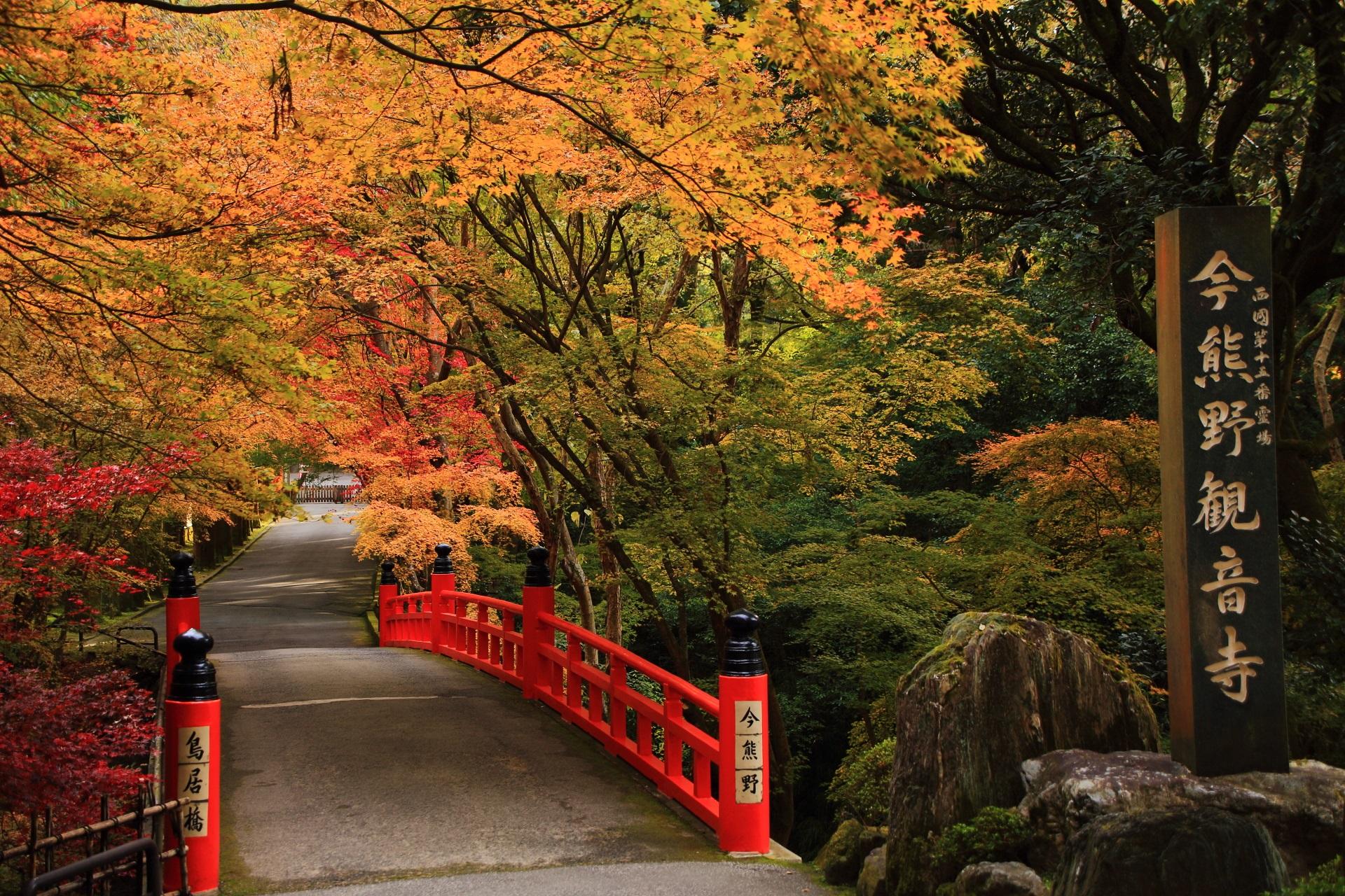 淡く優しい秋色につつまる鳥居橋