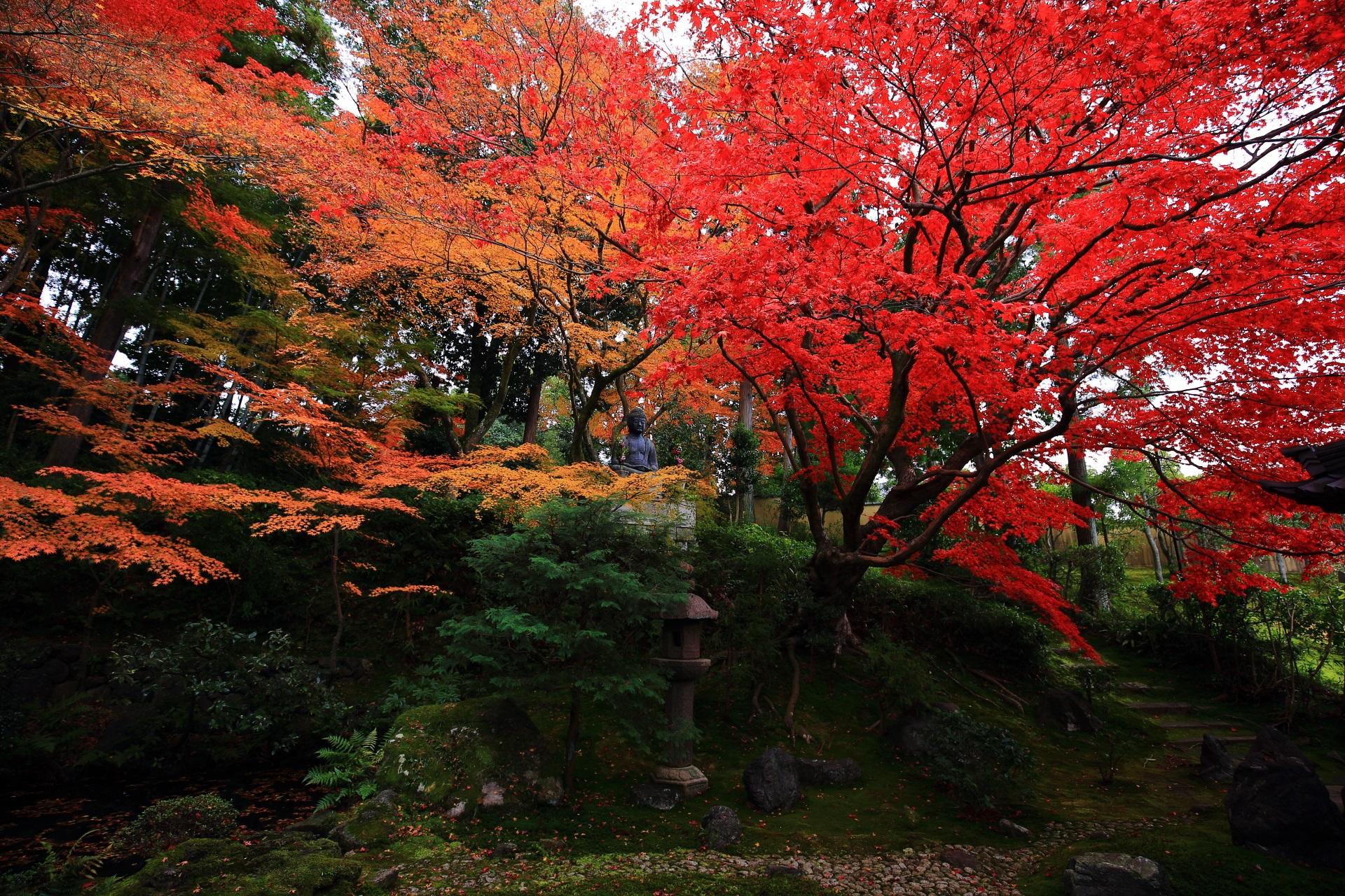 風情ある美しい栄摂院庭園の極上の紅葉
