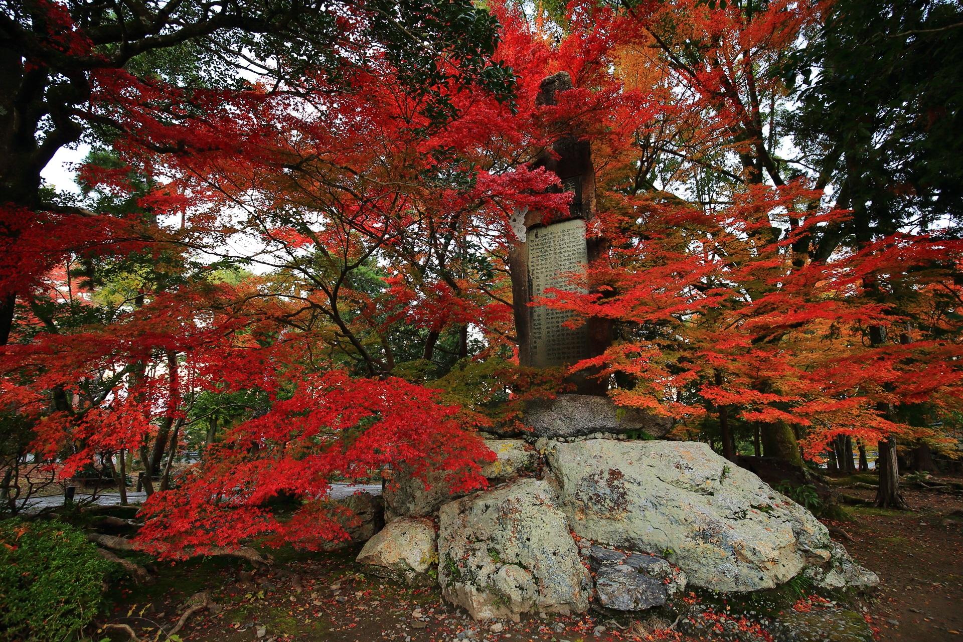 南禅寺の石碑をつつみこむ赤とオレンジの紅葉