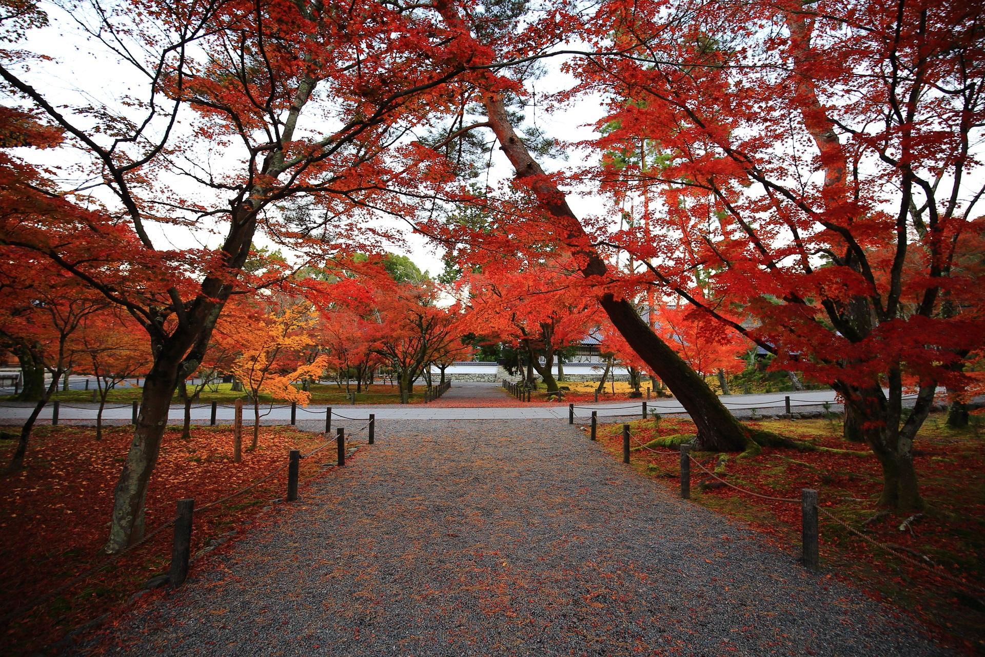 南禅寺の境内を秋色に染める紅葉