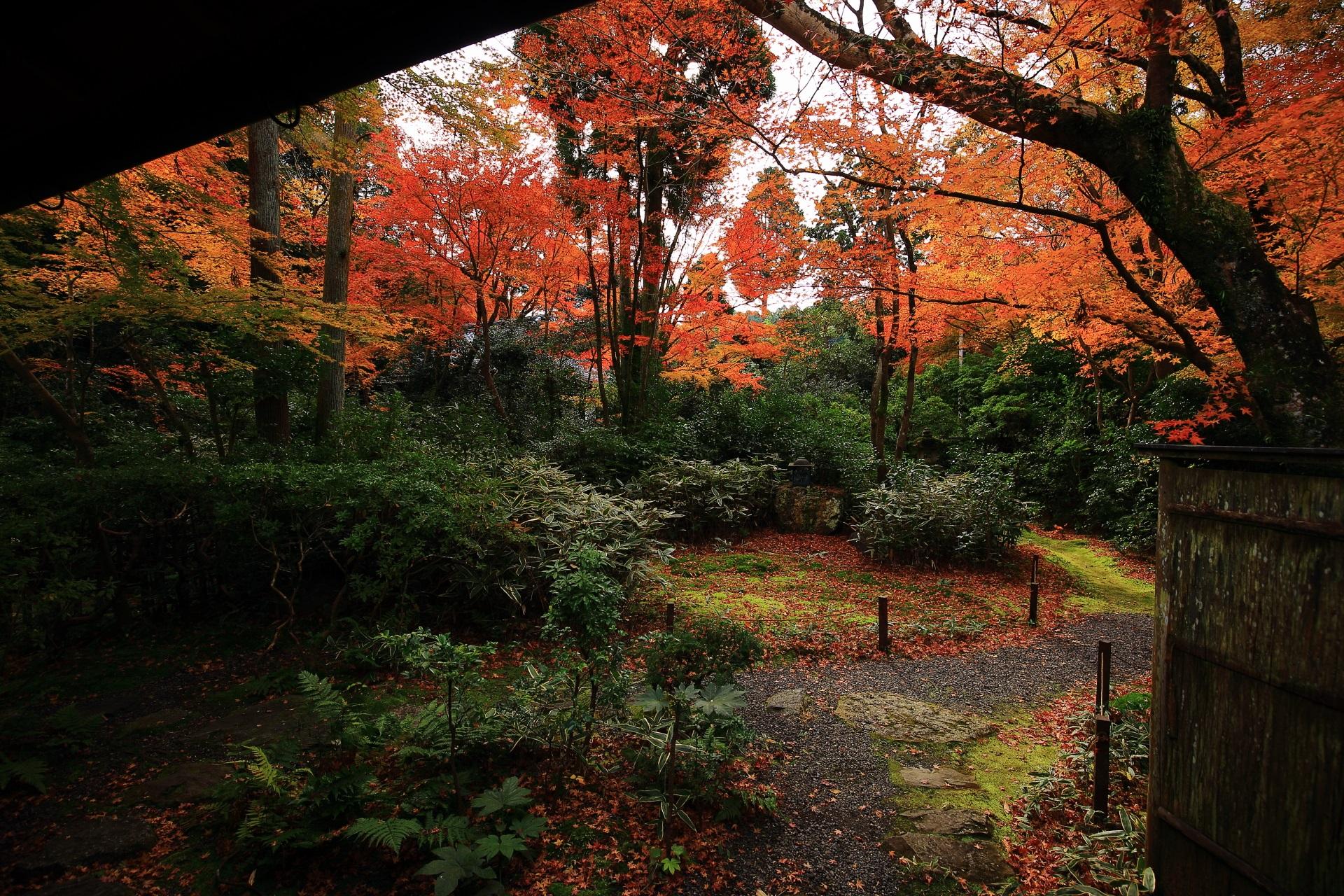 客殿から眺める晩秋の奥深い含翆庭