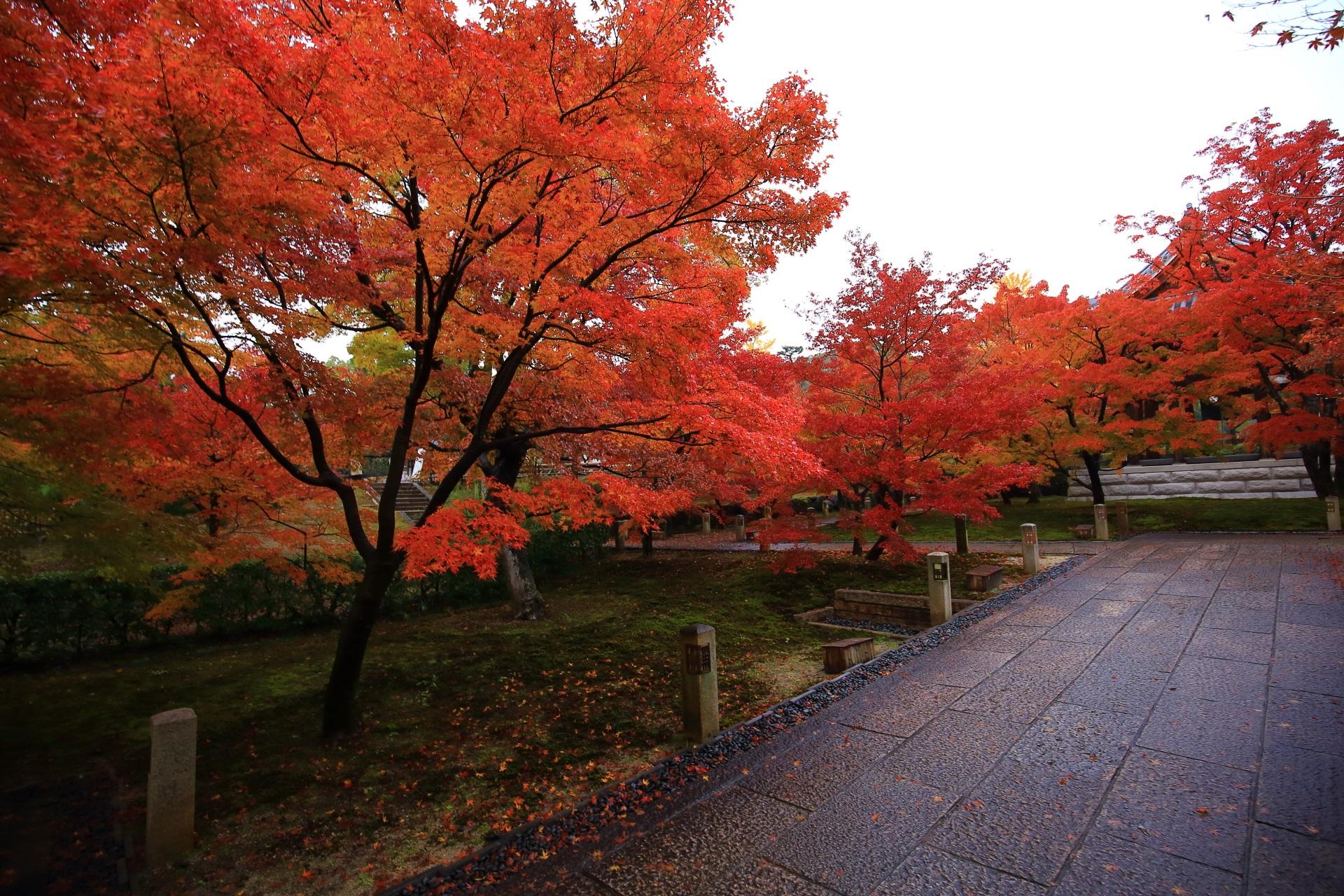 智積院の雨で潤う秋色の空間