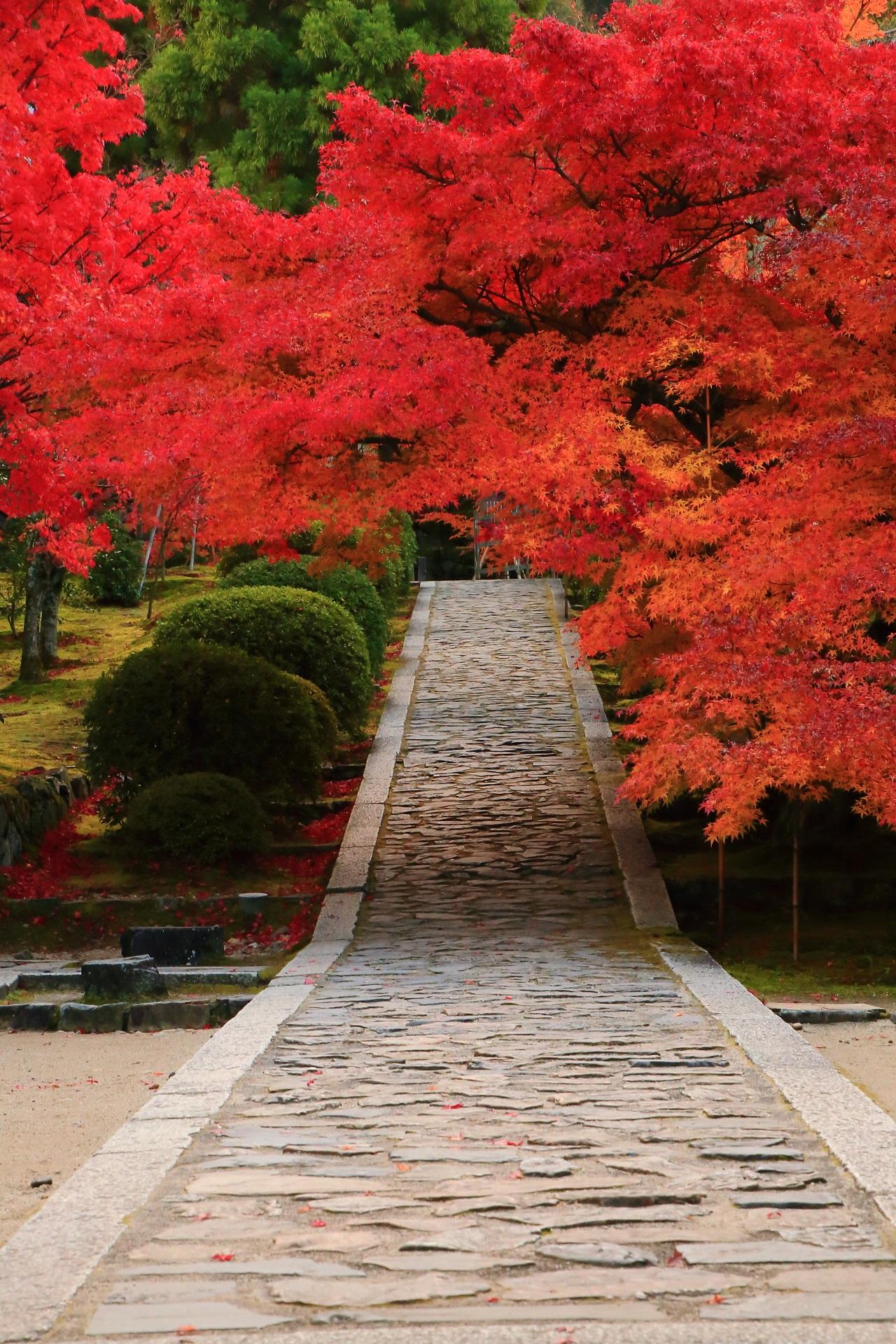 一休寺の素晴らしい紅葉の情景