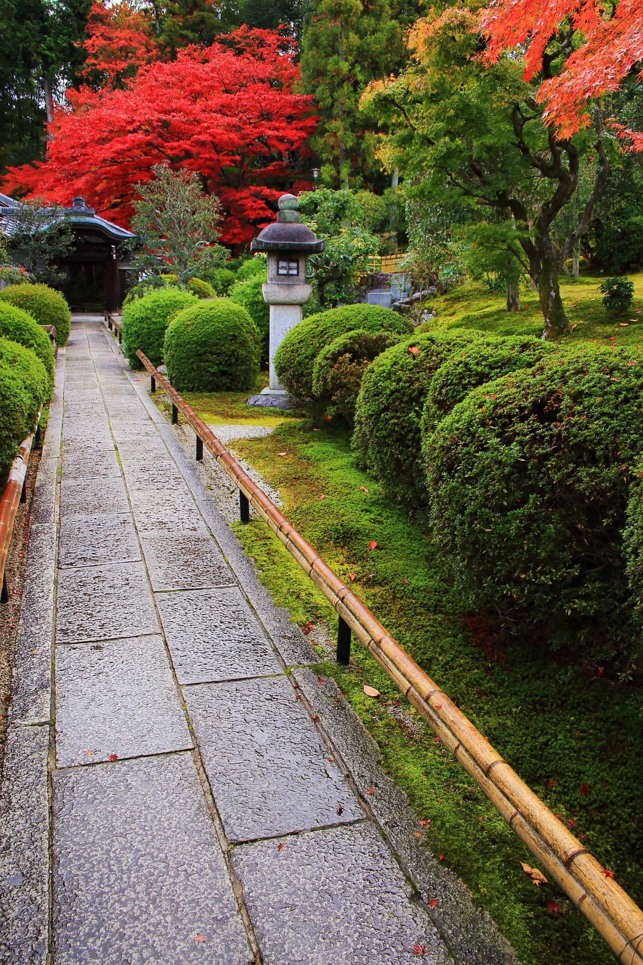 秋色の風情ある絶品の参道