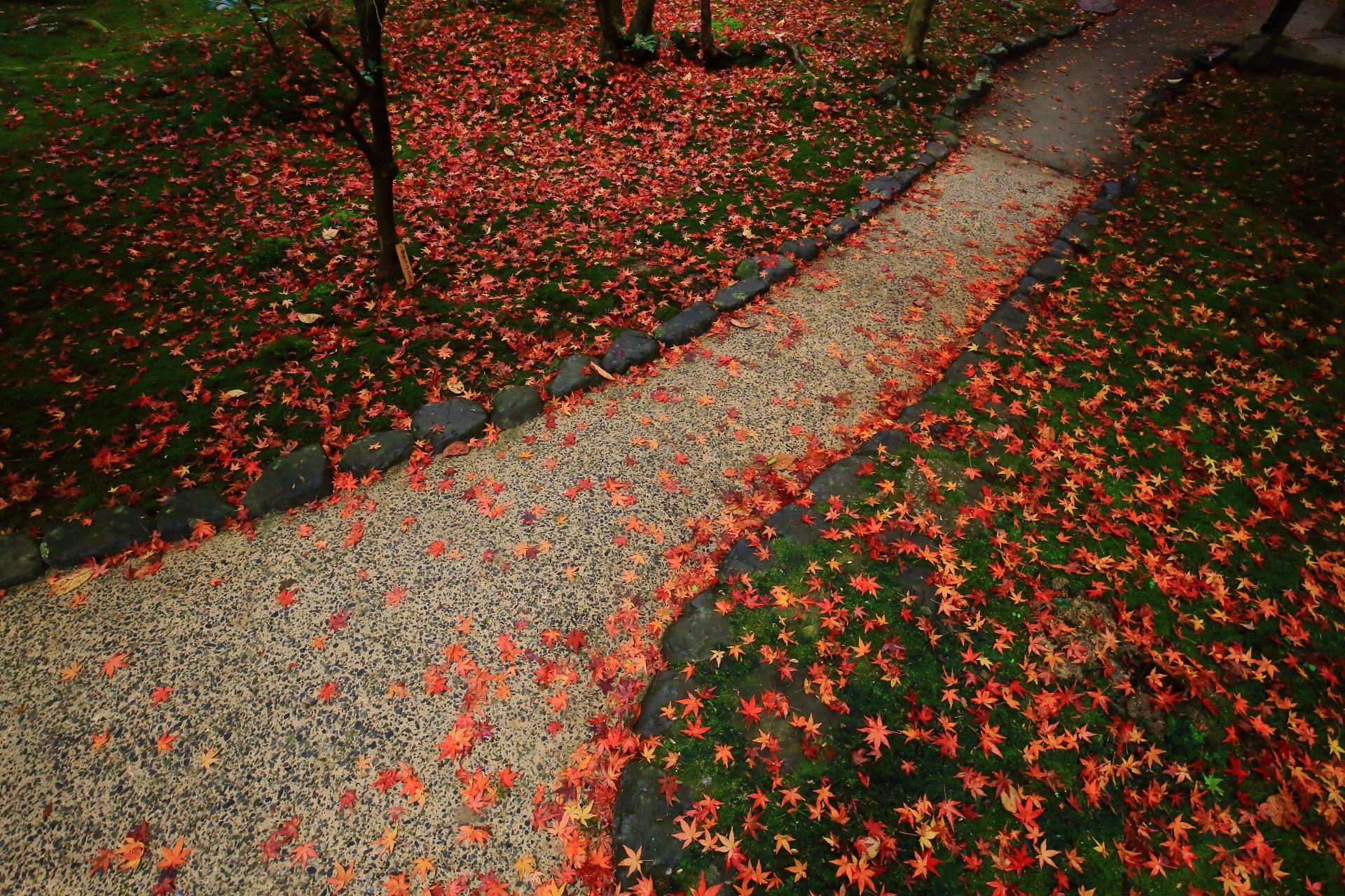 楽しく賑やかな雰囲気もする散り紅葉の参道