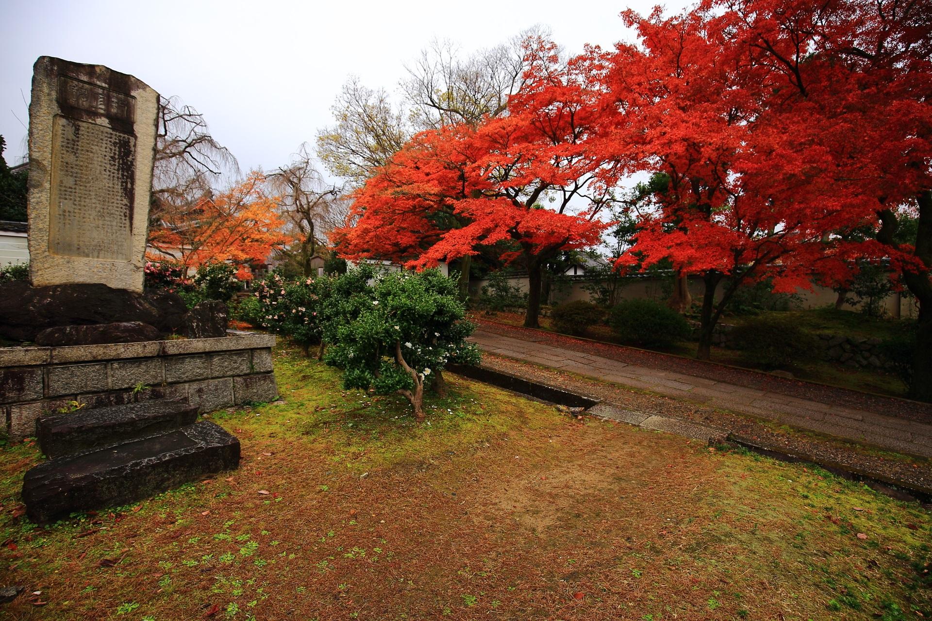 養源院の参道の横から眺めた凄い紅葉