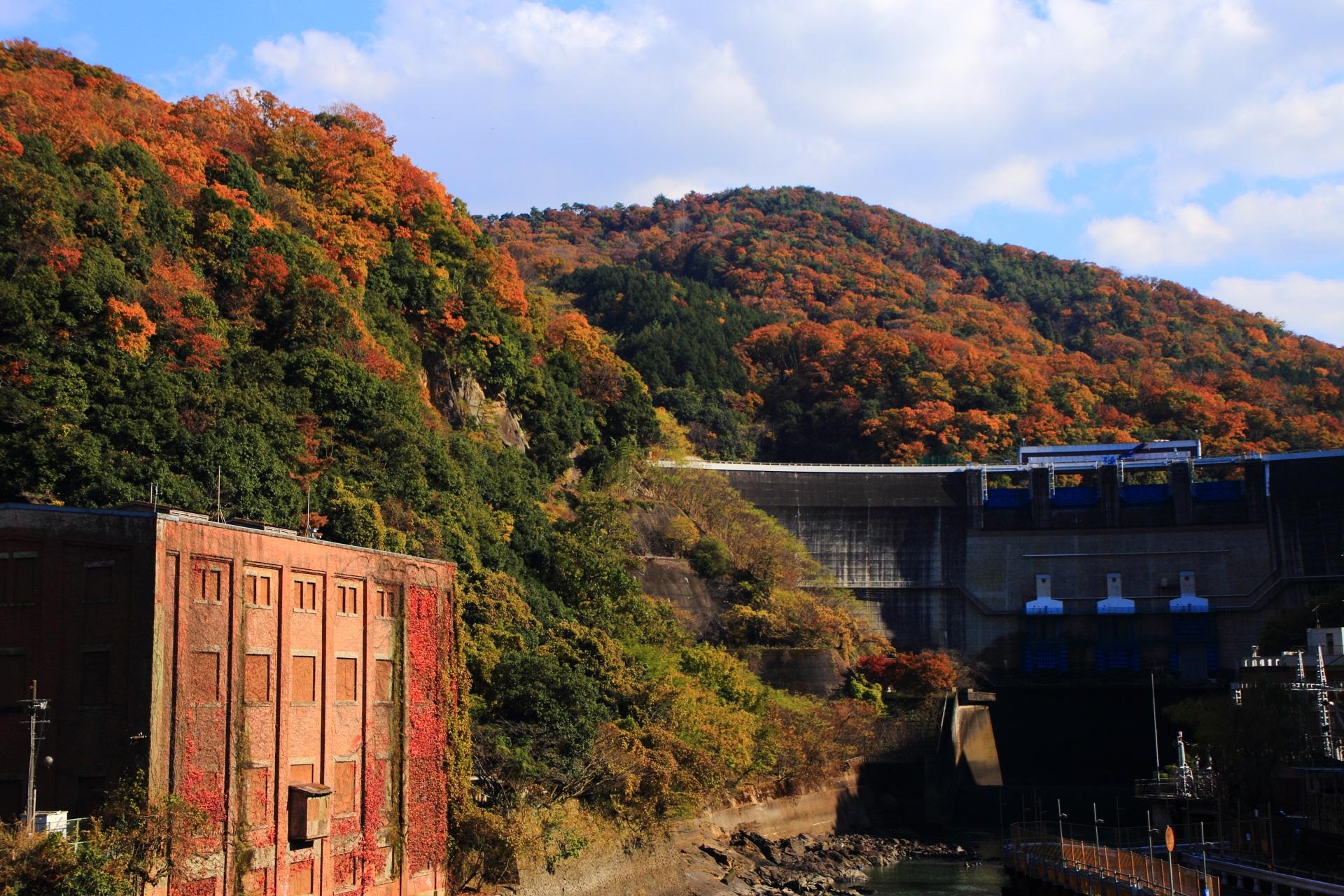 白虹橋から眺めた天ヶ瀬ダムと志津川発電所跡と色づく山々
