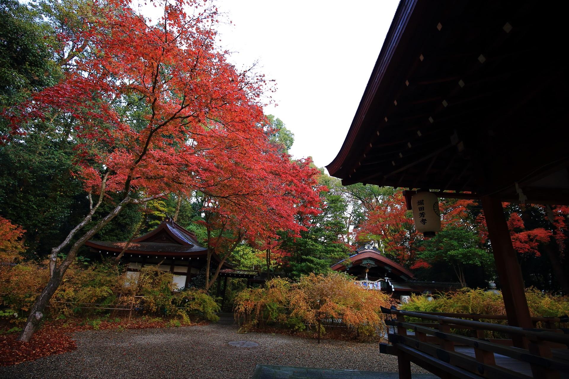 梨木神社の拝殿のシルエットと華やぐ紅葉と奥の本殿