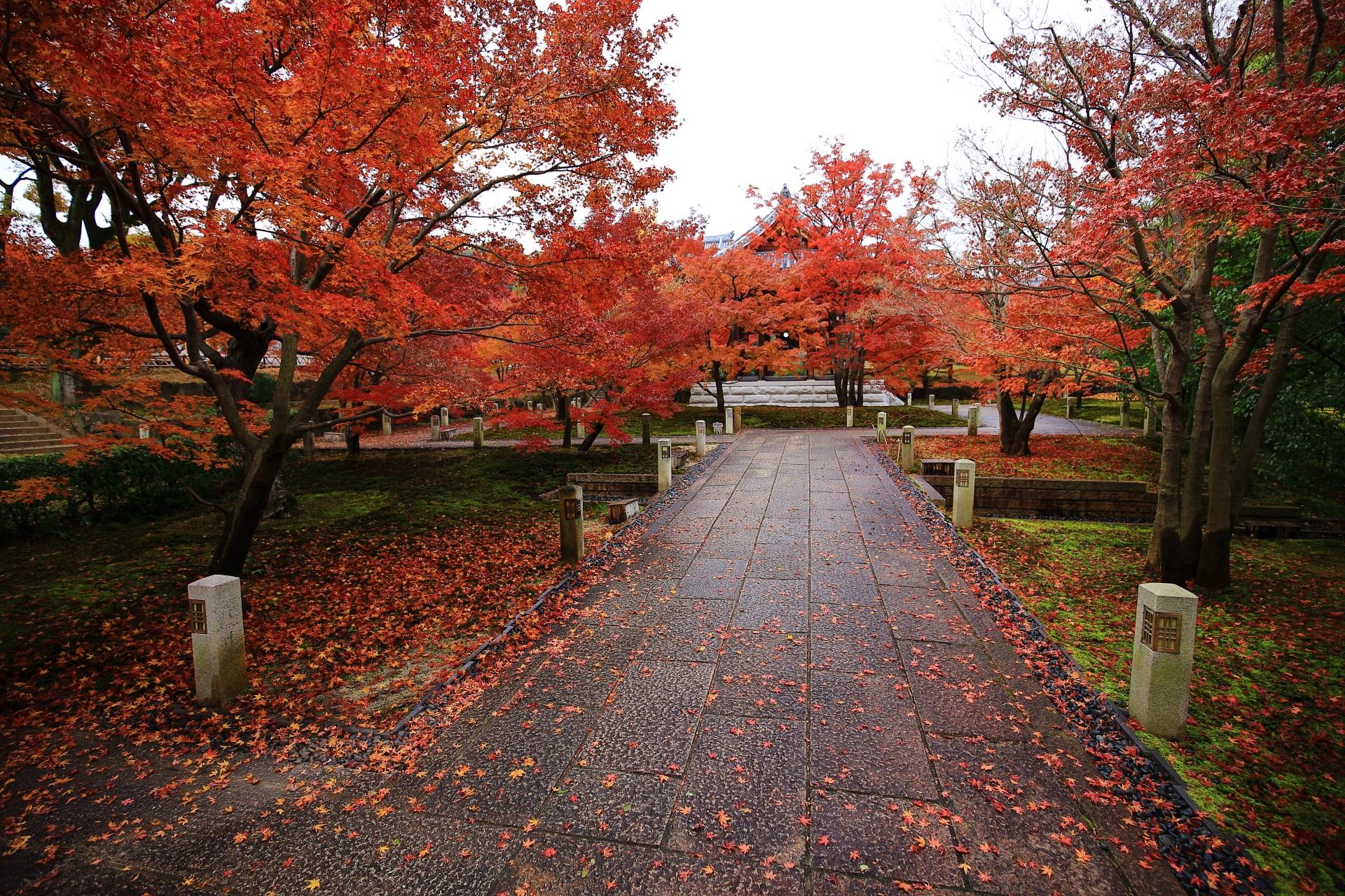 智積院の雨上がりの鐘楼をつつむ紅葉と散り紅葉