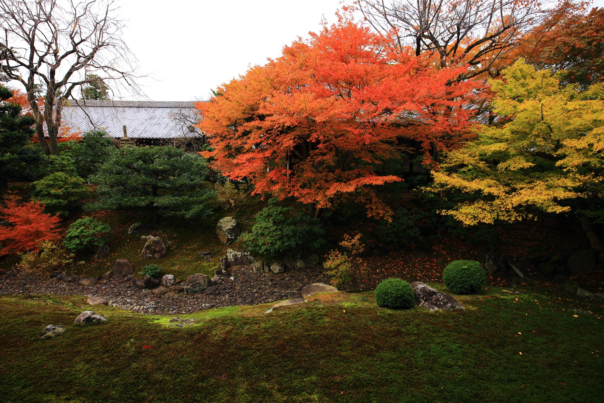 庭園を通る枯流れが特徴的な紅葉の裏方丈庭園