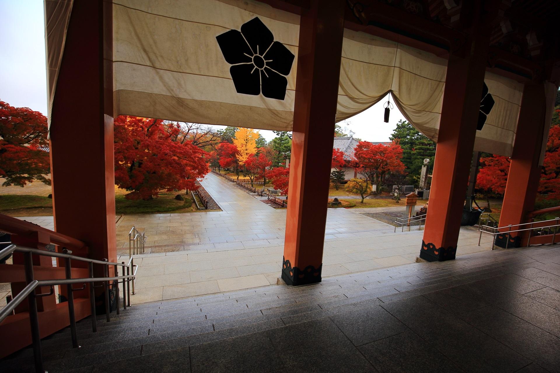 智積院の早朝の静かな境内を彩る鮮やかな紅葉と銀杏