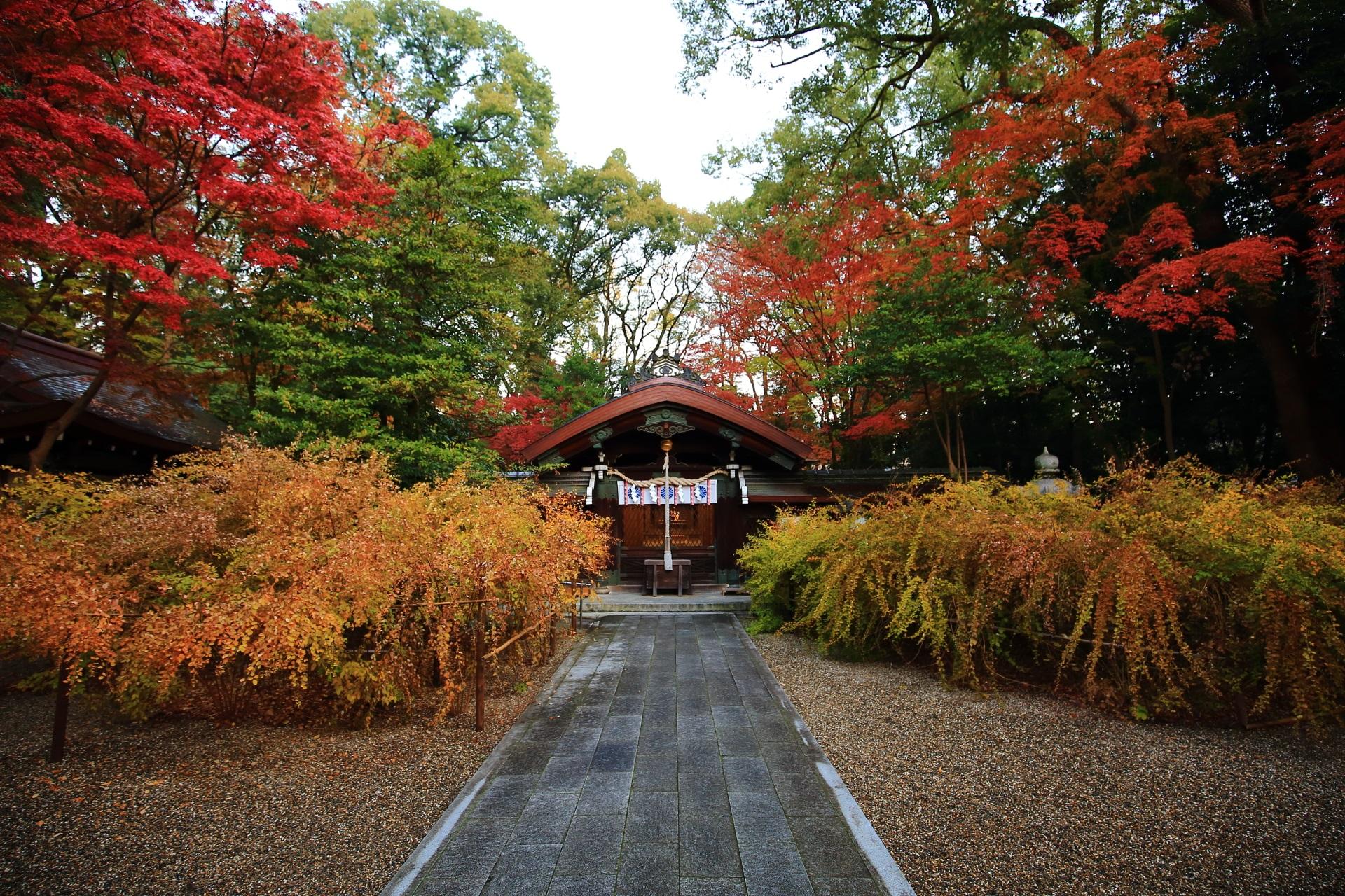 梨木神社の素晴らしい紅葉と色とりどりの秋の情景