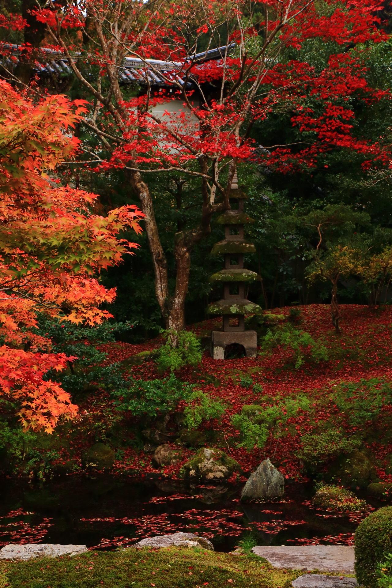 鮮やかな紅葉につつまれる石塔