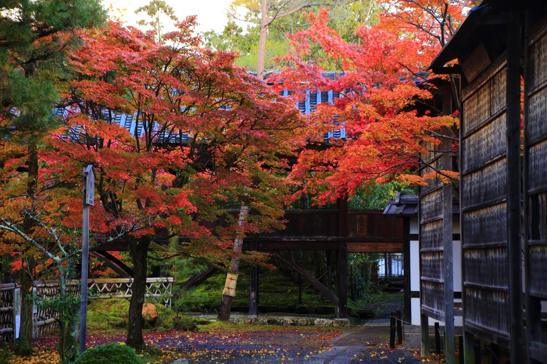 鮮やかに彩られた回廊の下を通る風情ある参道