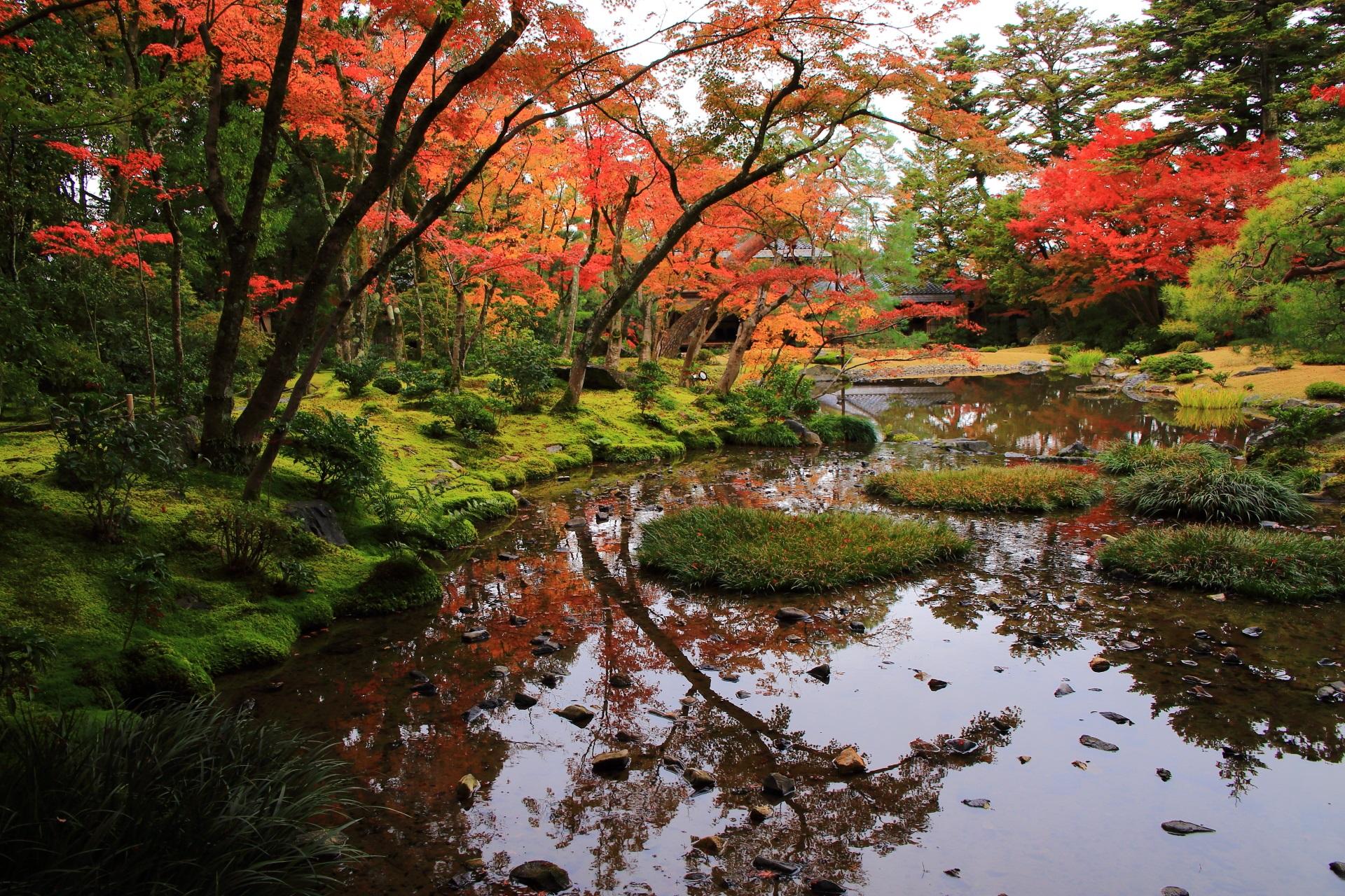 無鄰菴の素晴らしい紅葉と庭園の情景
