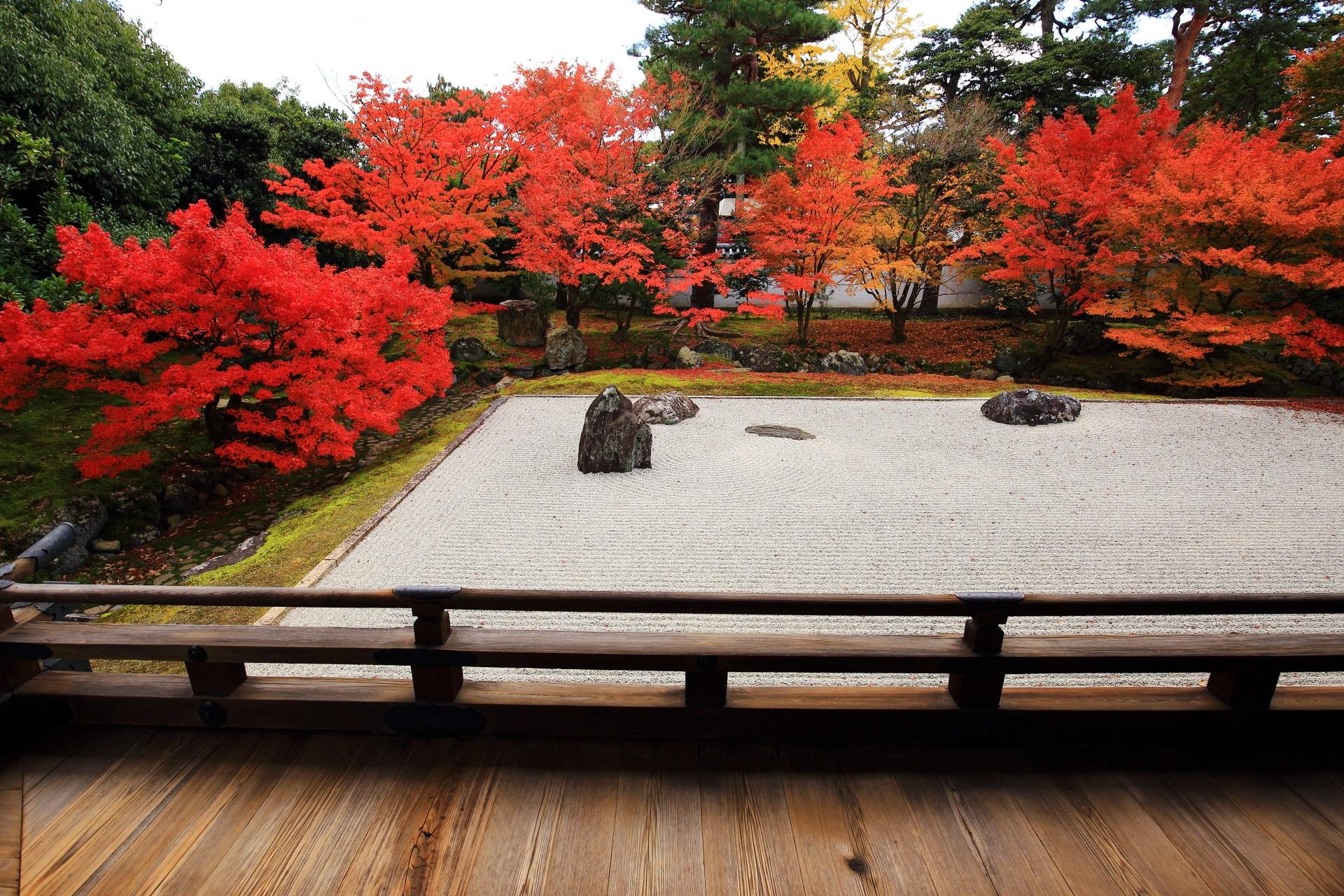 風情と華やかさを併せ持った見事な紅葉