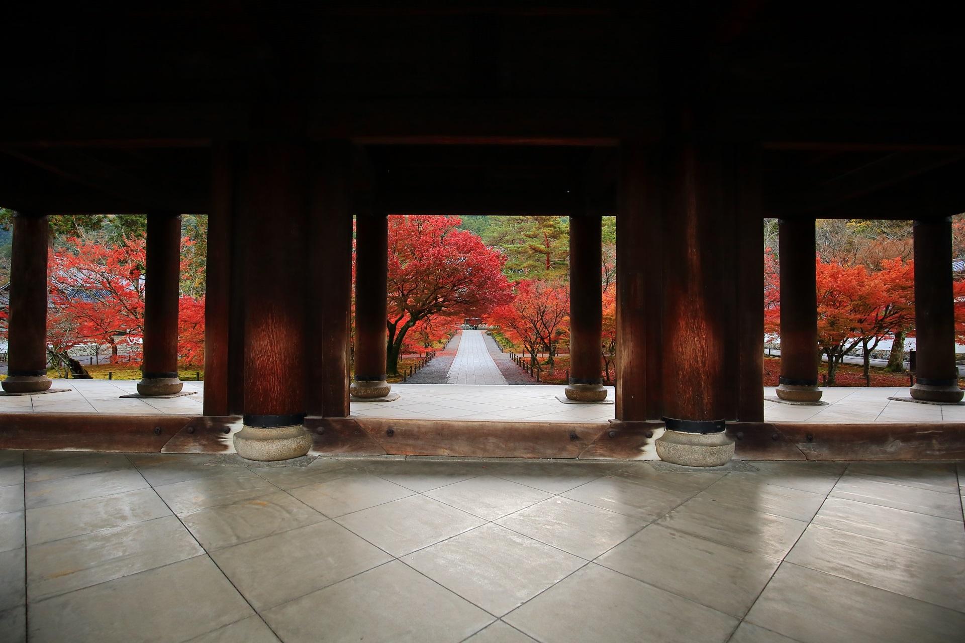 三門の下から眺める紅葉の絶景