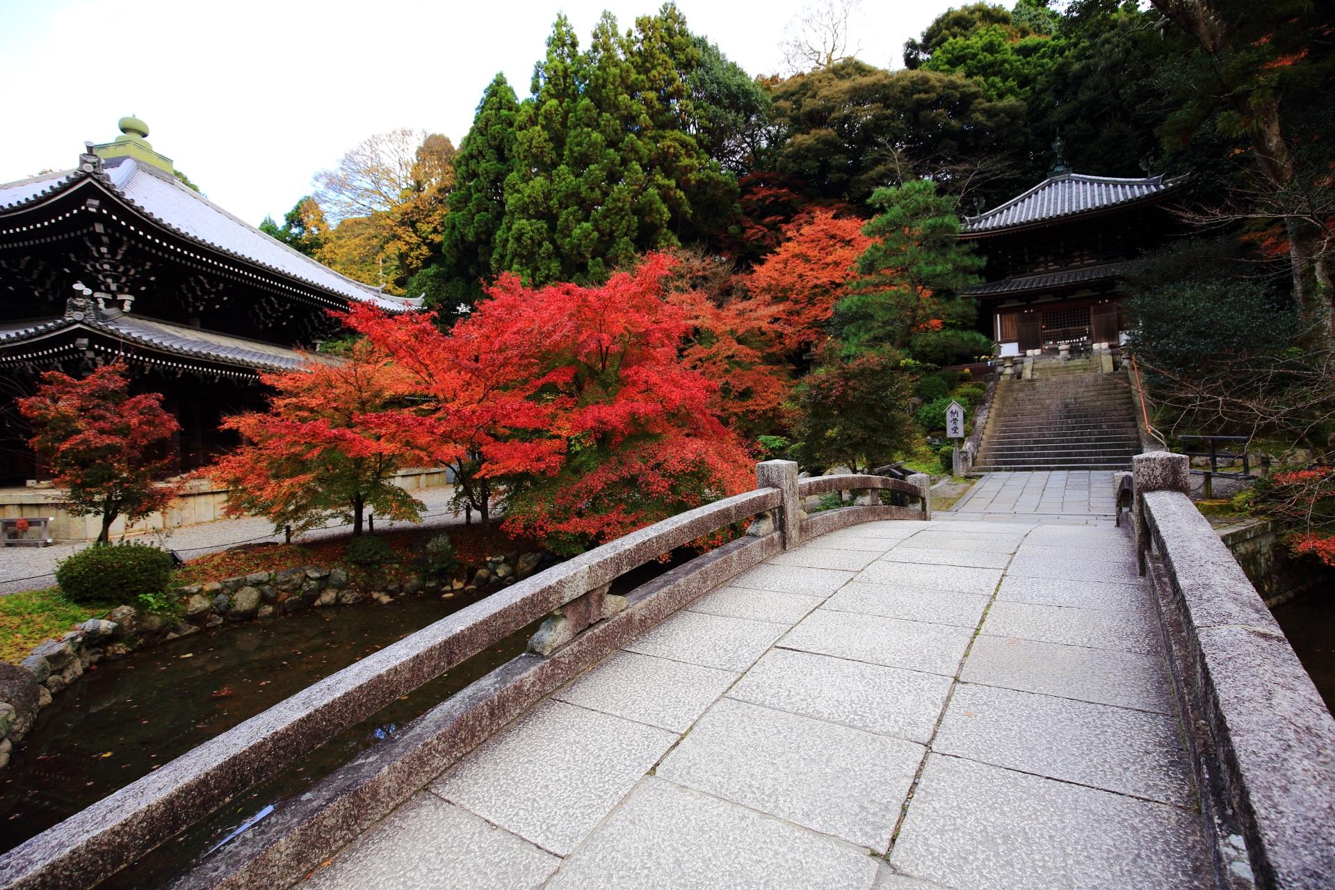 知恩院 紅葉 情緒ある深い秋色に染まる名所