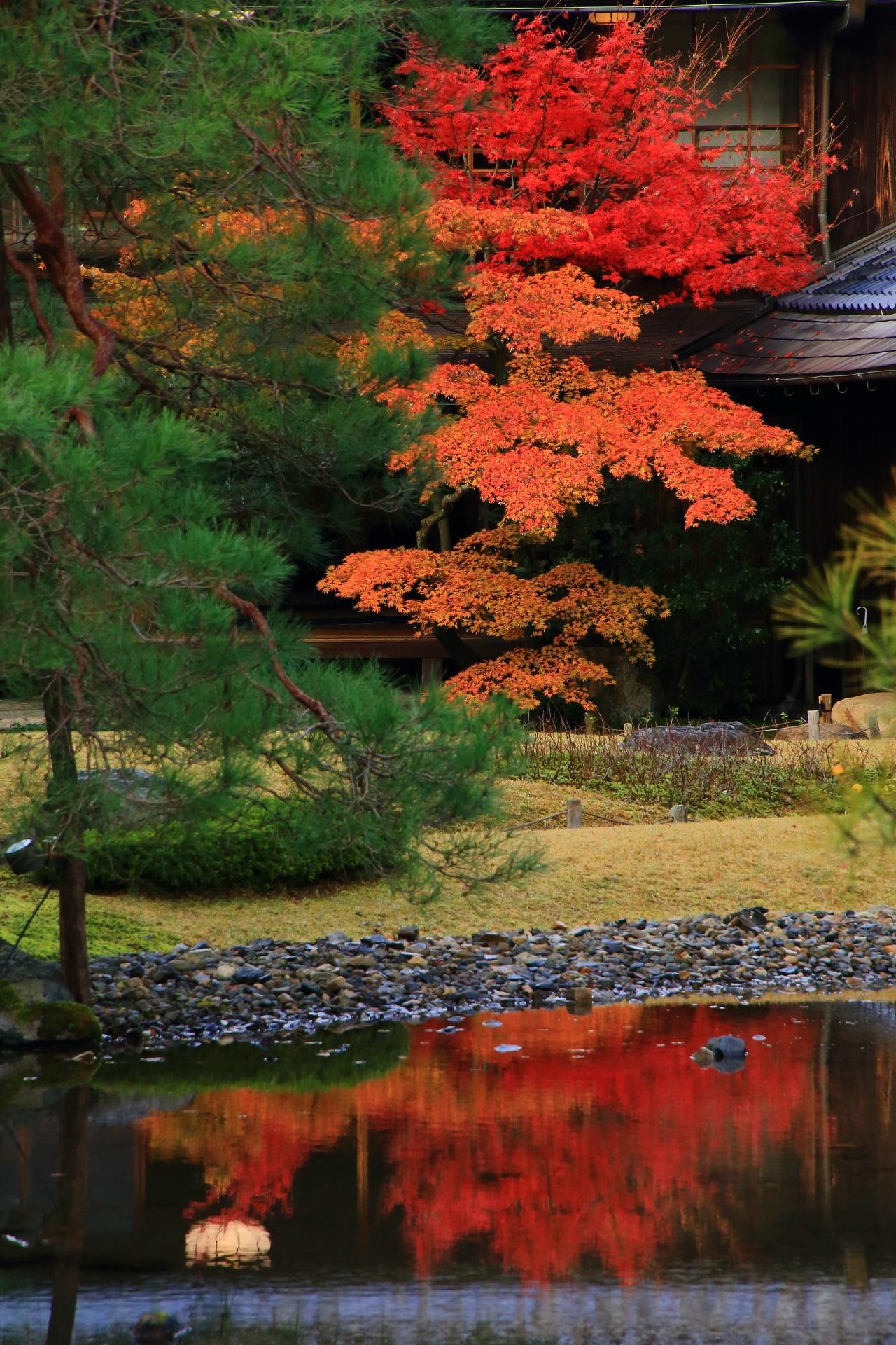 無鄰菴の鮮やかな赤とオレンジの紅葉と美しい紅葉の水鏡