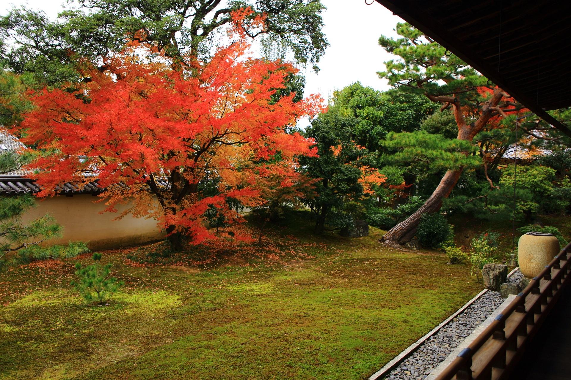 上品な彩りにつつまれた相国寺の秋の方丈