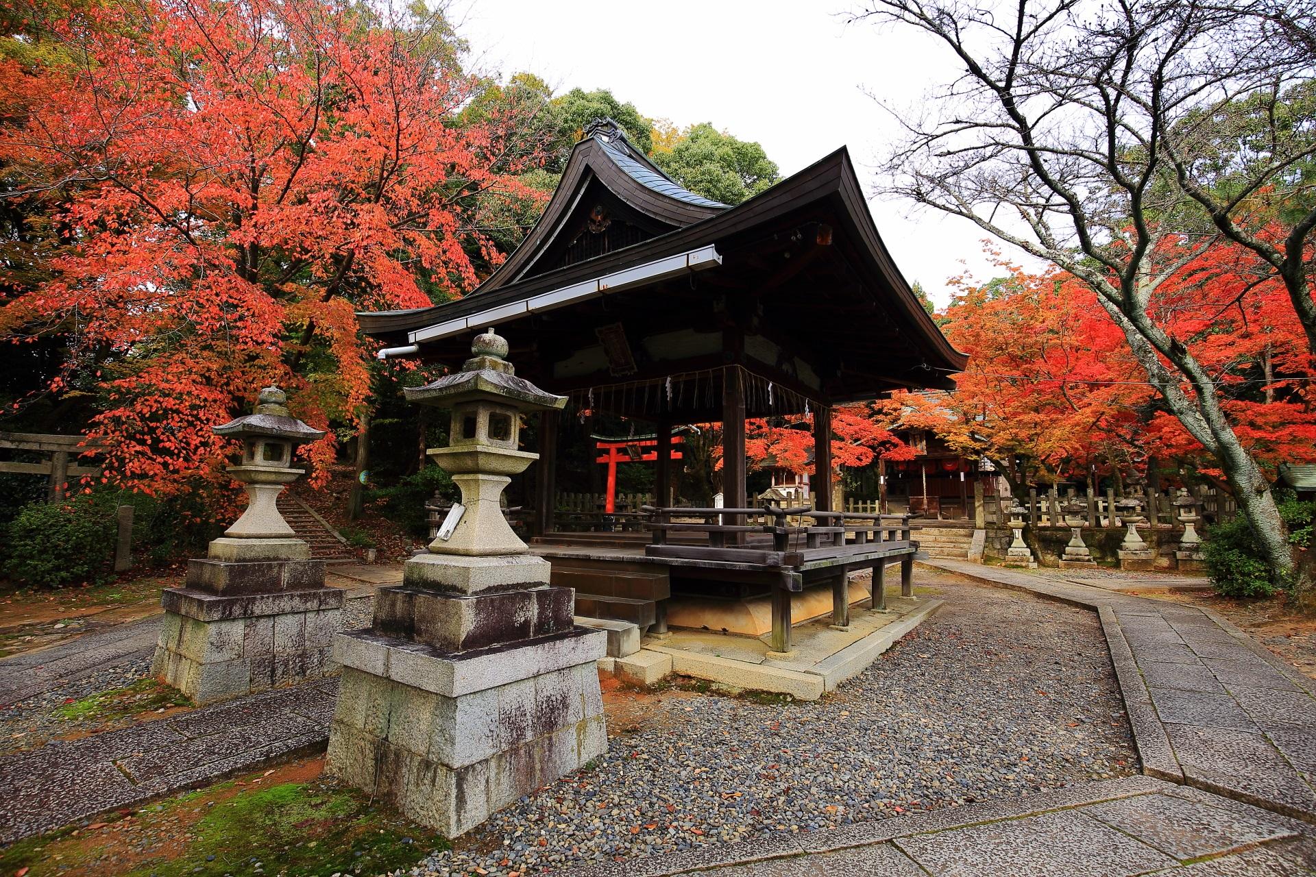 竹中稲荷神社の拝殿と本殿を彩る多彩な紅葉