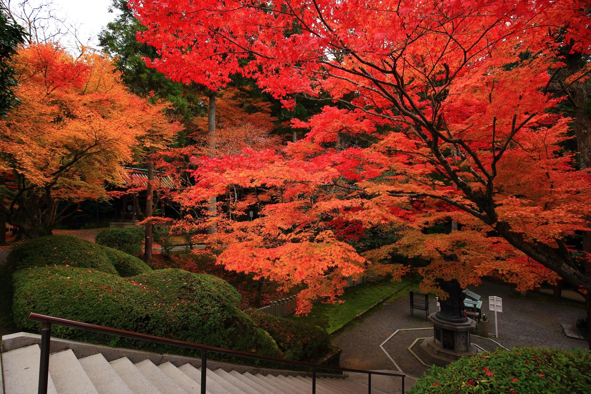 上から眺めた子まもり弘法大師像と紅葉