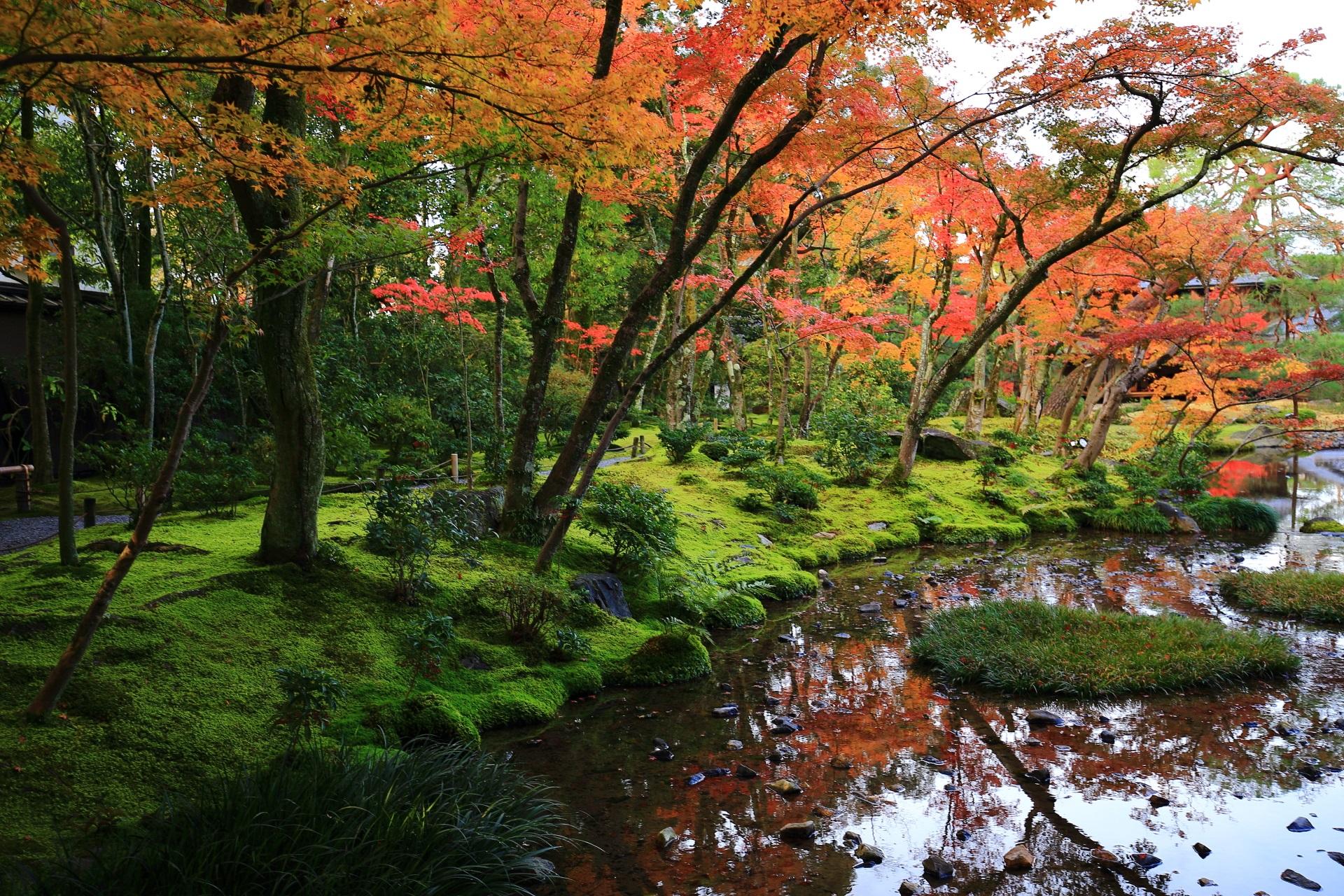 無鄰菴の水辺の鮮やかな紅葉と水鏡
