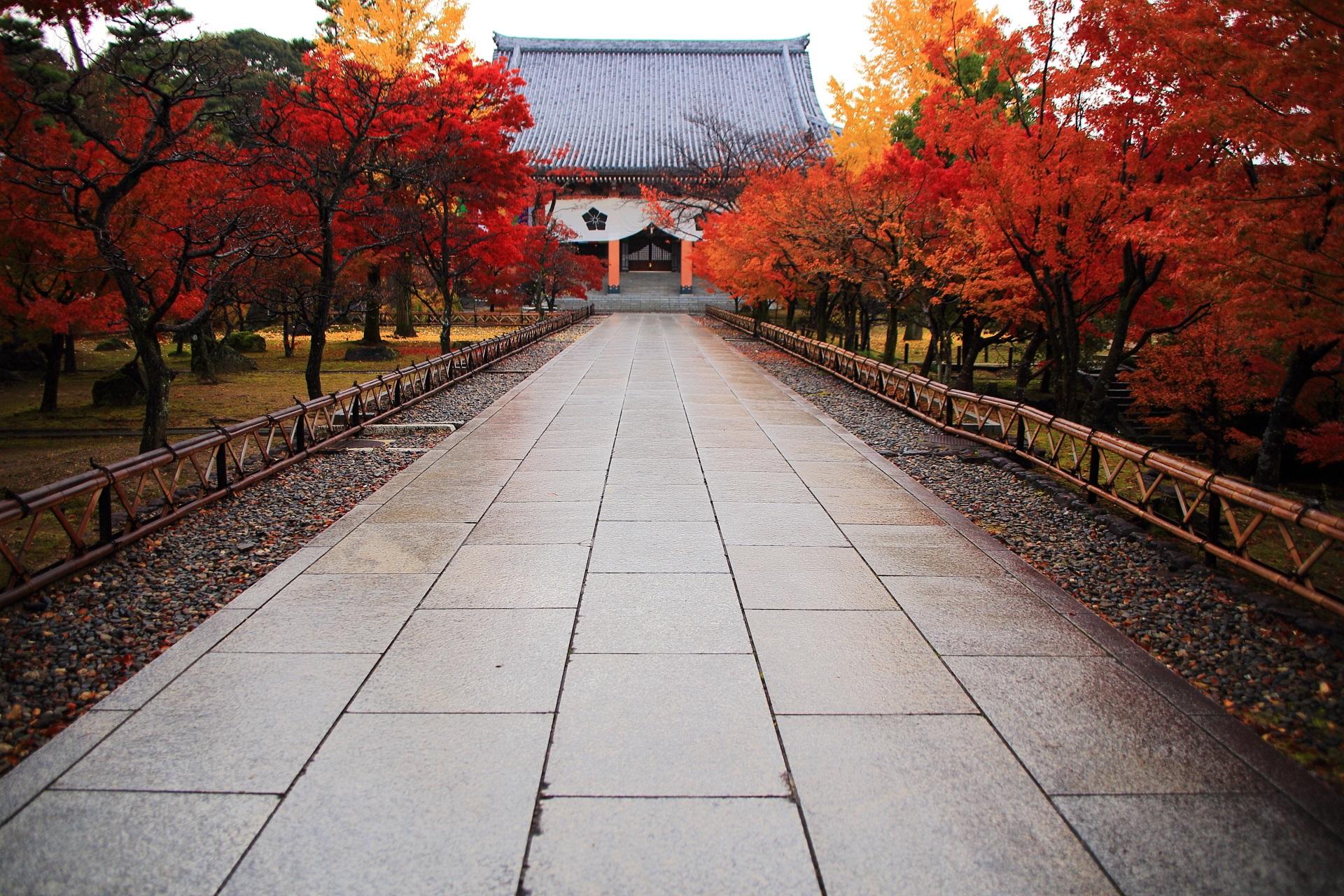 智積院の金堂と紅葉の参道の高画質写真