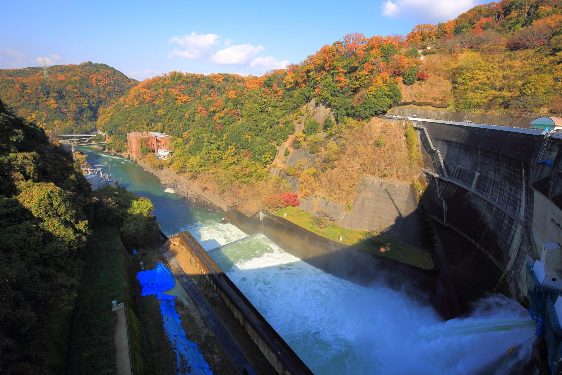 放流する天ヶ瀬ダムと紅葉に染まった宇治川