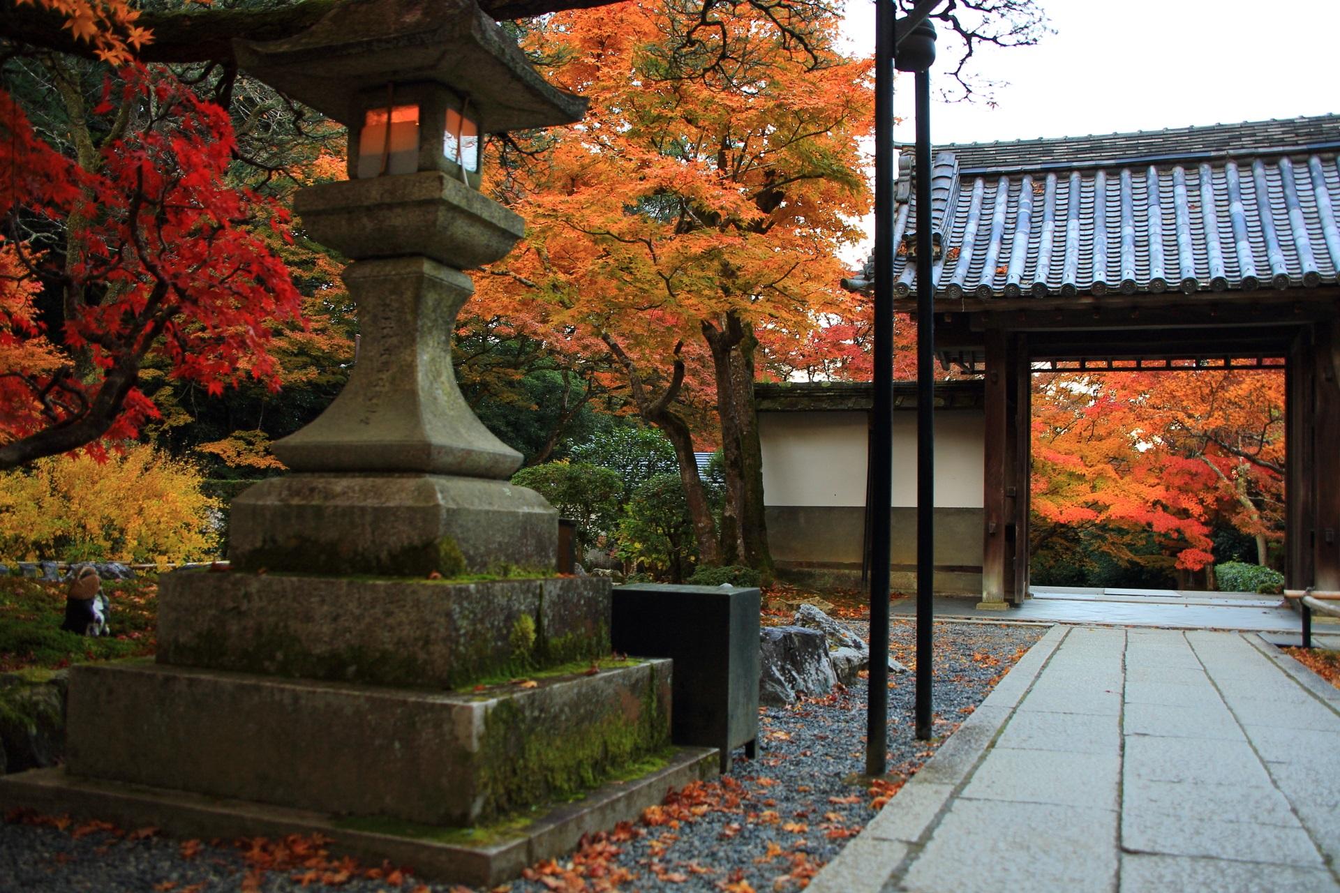 色とりどりの紅葉につつまれる最勝院の境内や山門