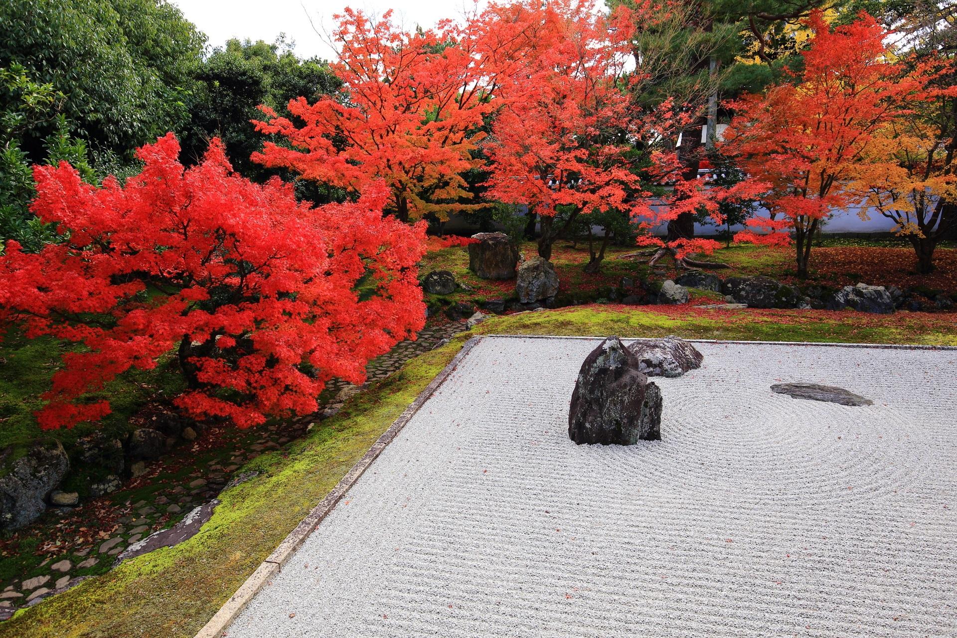 石庭を優雅に彩る深い色合いの紅葉