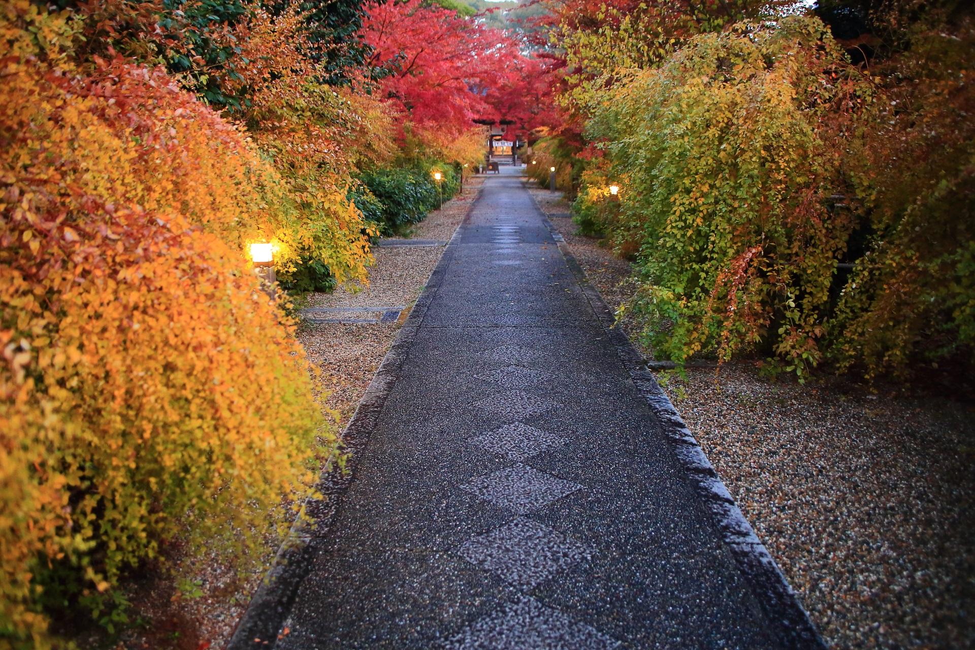 梨木神社の参道の素晴らしい紅葉や秋色の情景