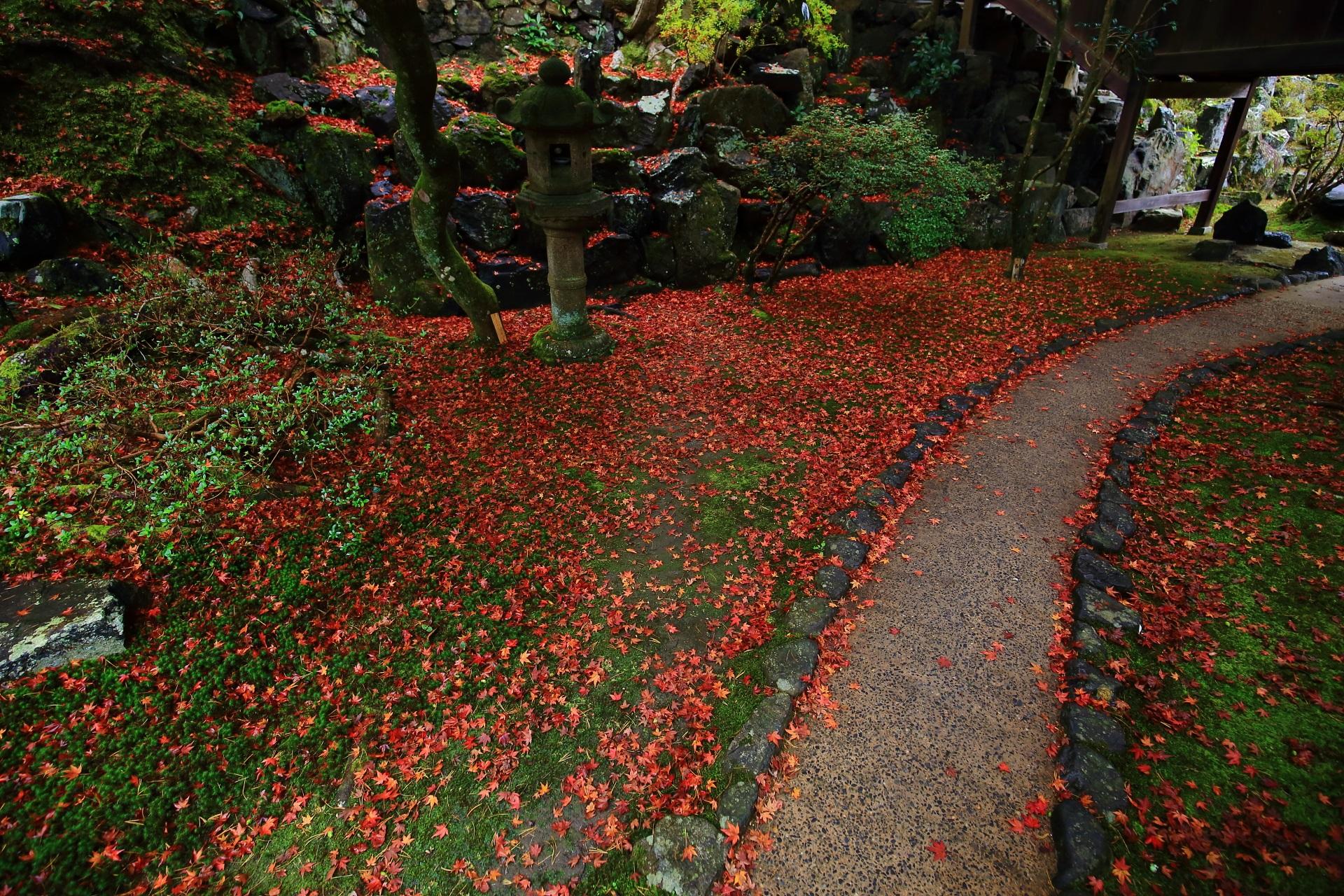 霊鑑寺の回廊付近の参道の散り紅葉