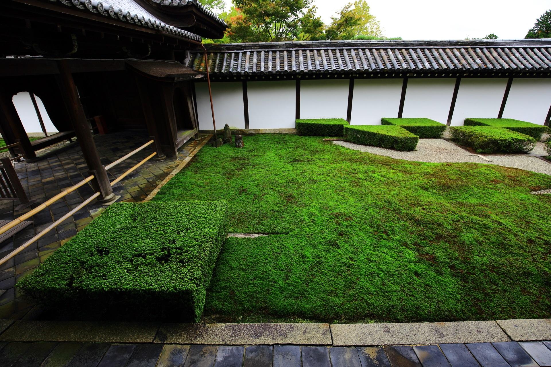 緑の苔とサツキの刈り込みが綺麗な方丈西庭
